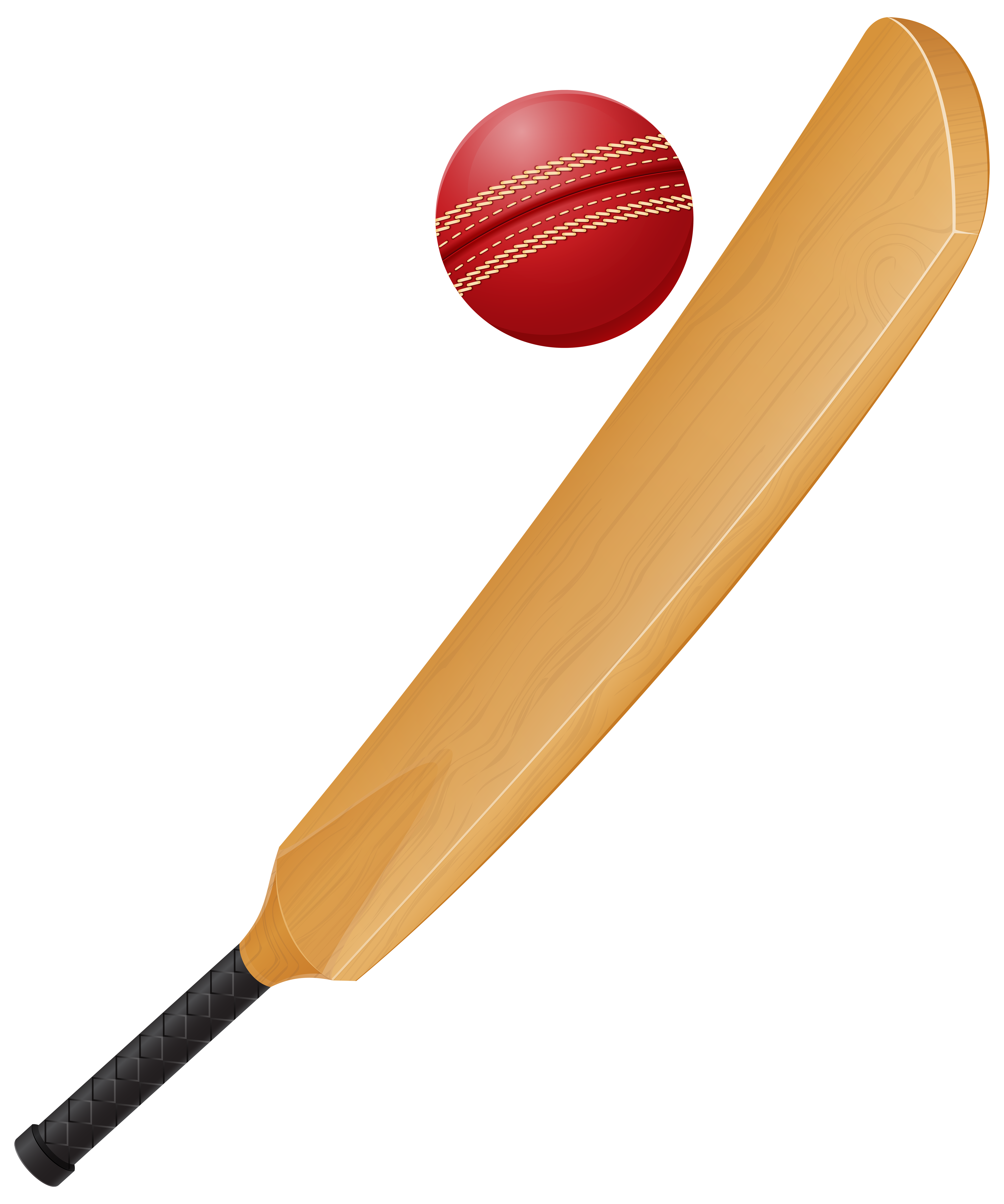 Set transparent png clip. Clipart beach cricket
