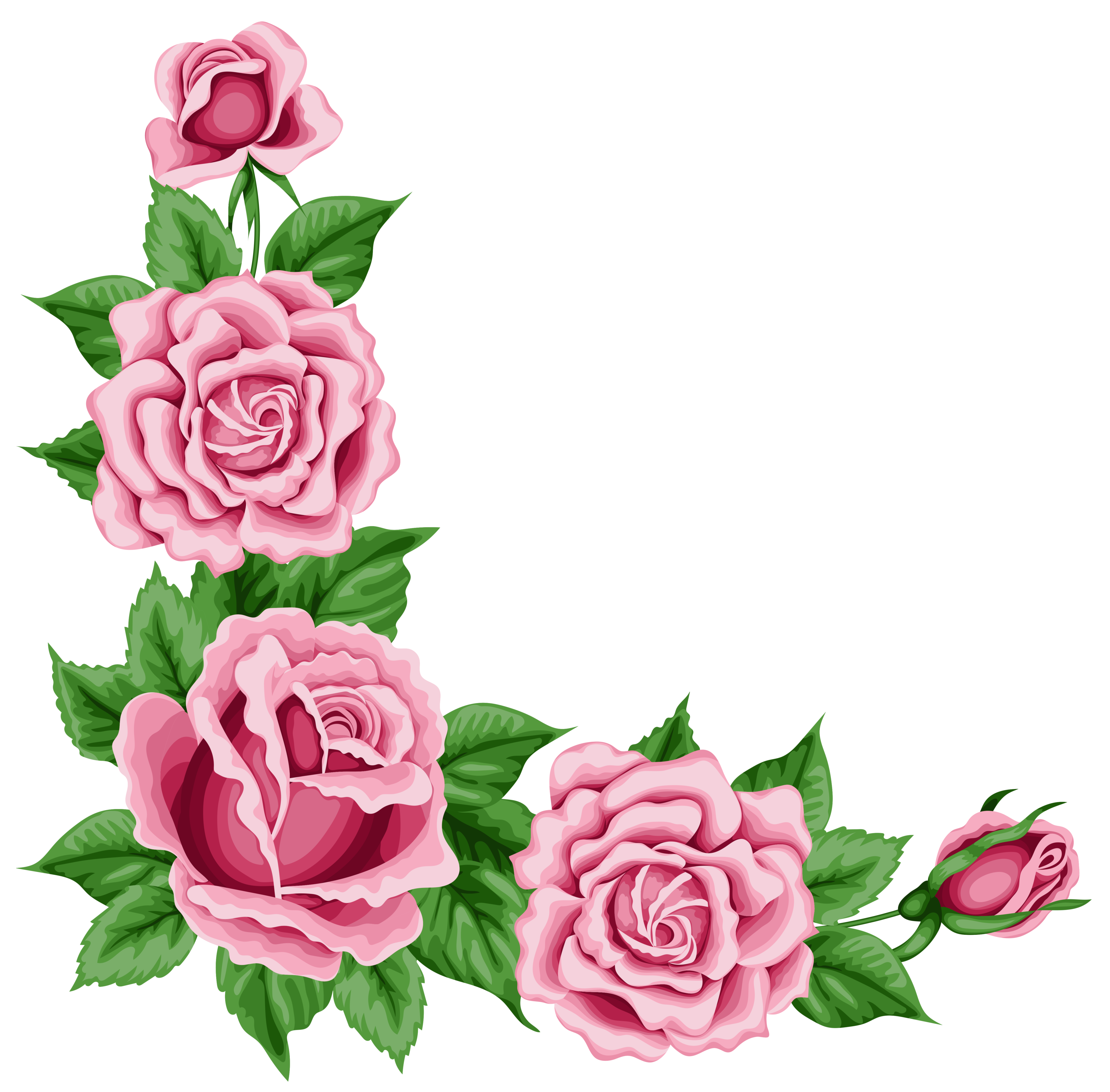 Rose clipart stick. Roses corner decoration png