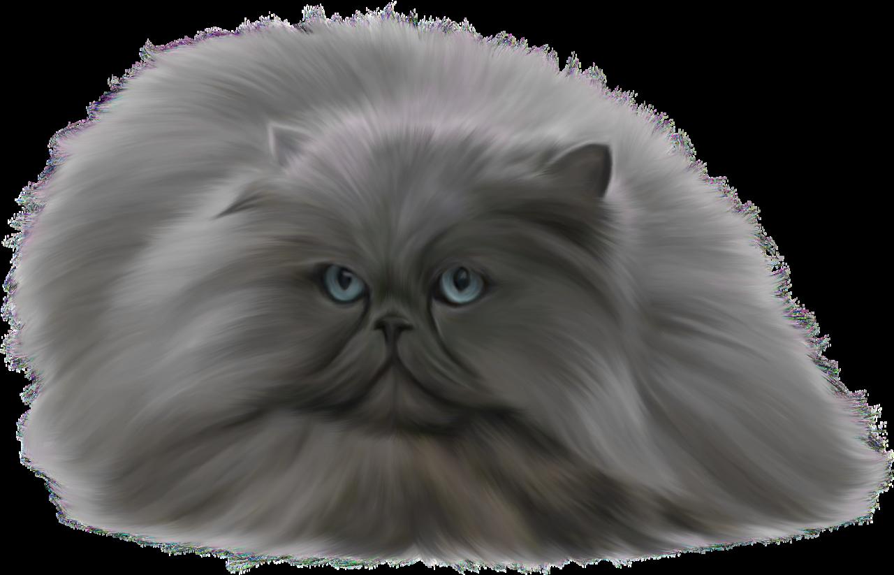Grey png clip art. Pet clipart cat fur