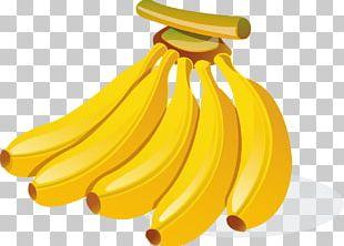 Clipart banana 5 banana. Cartoon png animation auglis