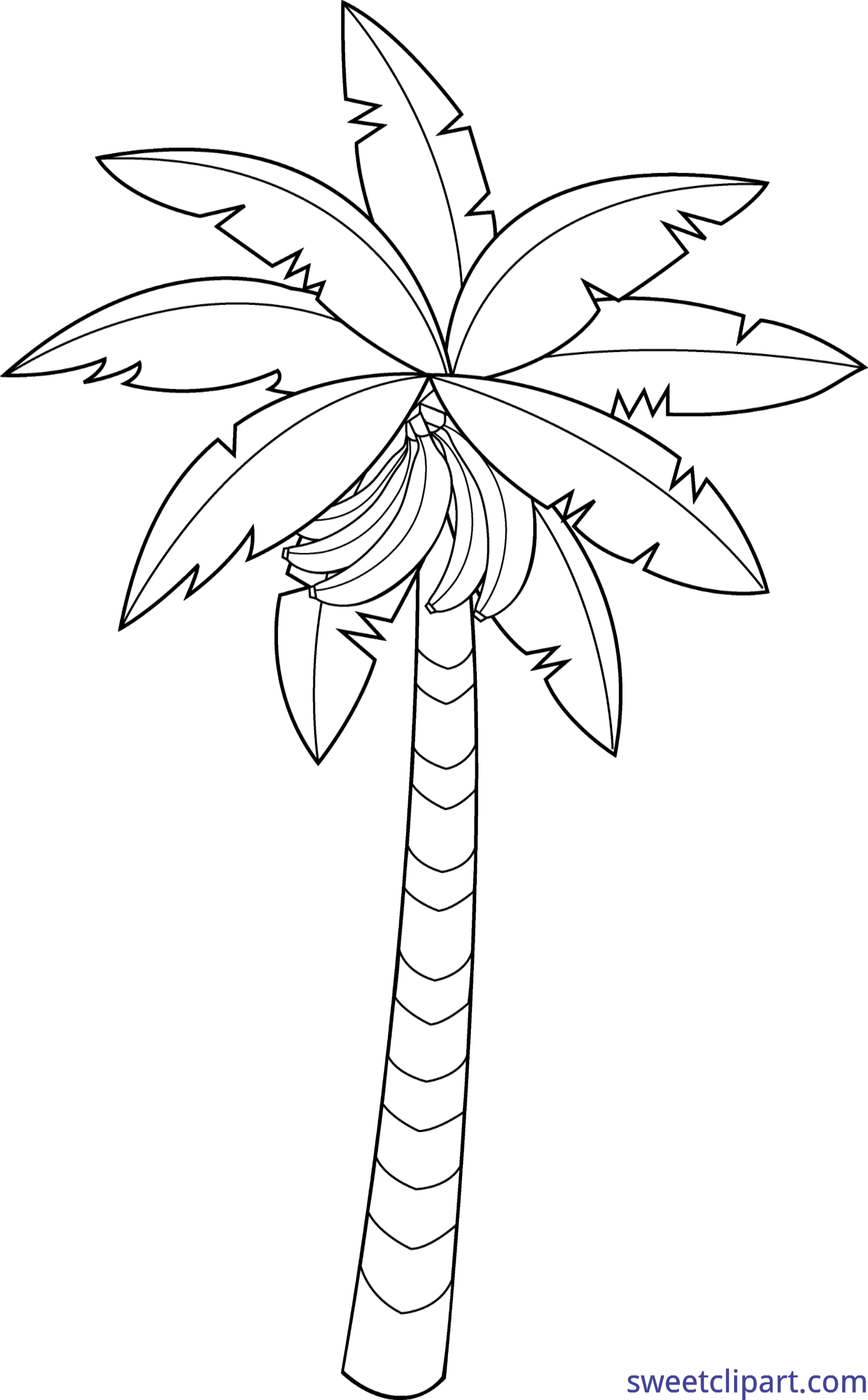 Banana tree lineart clip. Palm clipart bunch
