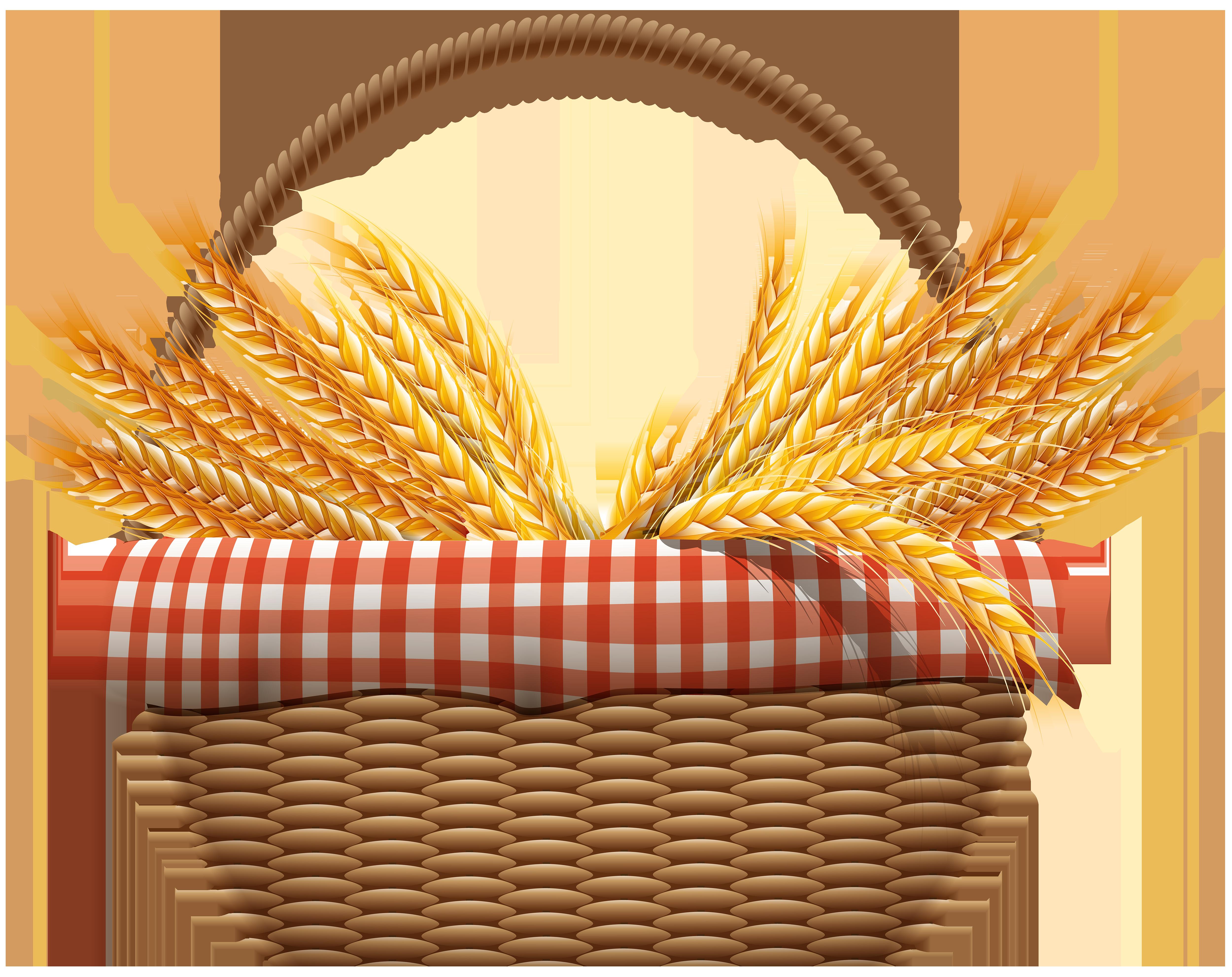 Pear clipart basket. Wheat computer file autumn
