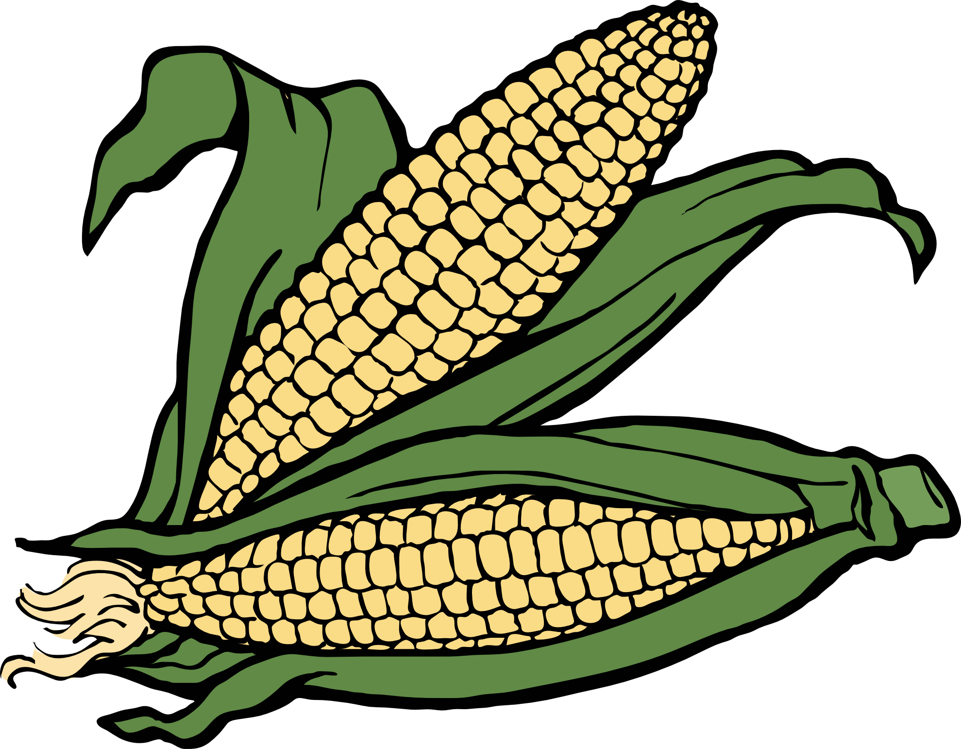Vegetables clipart corn. Coloring book panda free