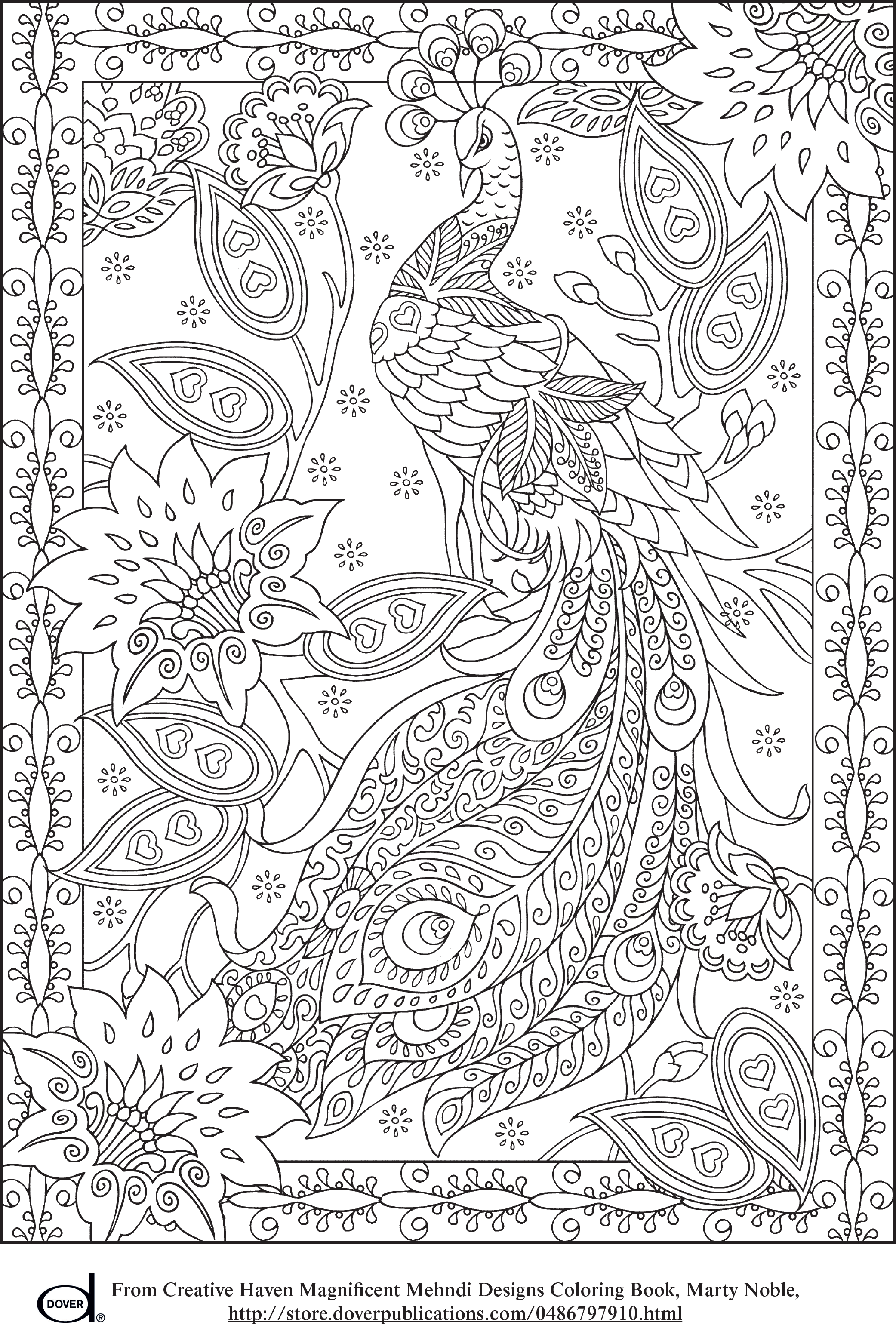 Peacock feather pages colouring. E clipart elephant coloring page