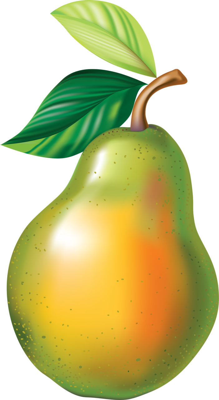 Pear clipart artistic.  png pinterest clip