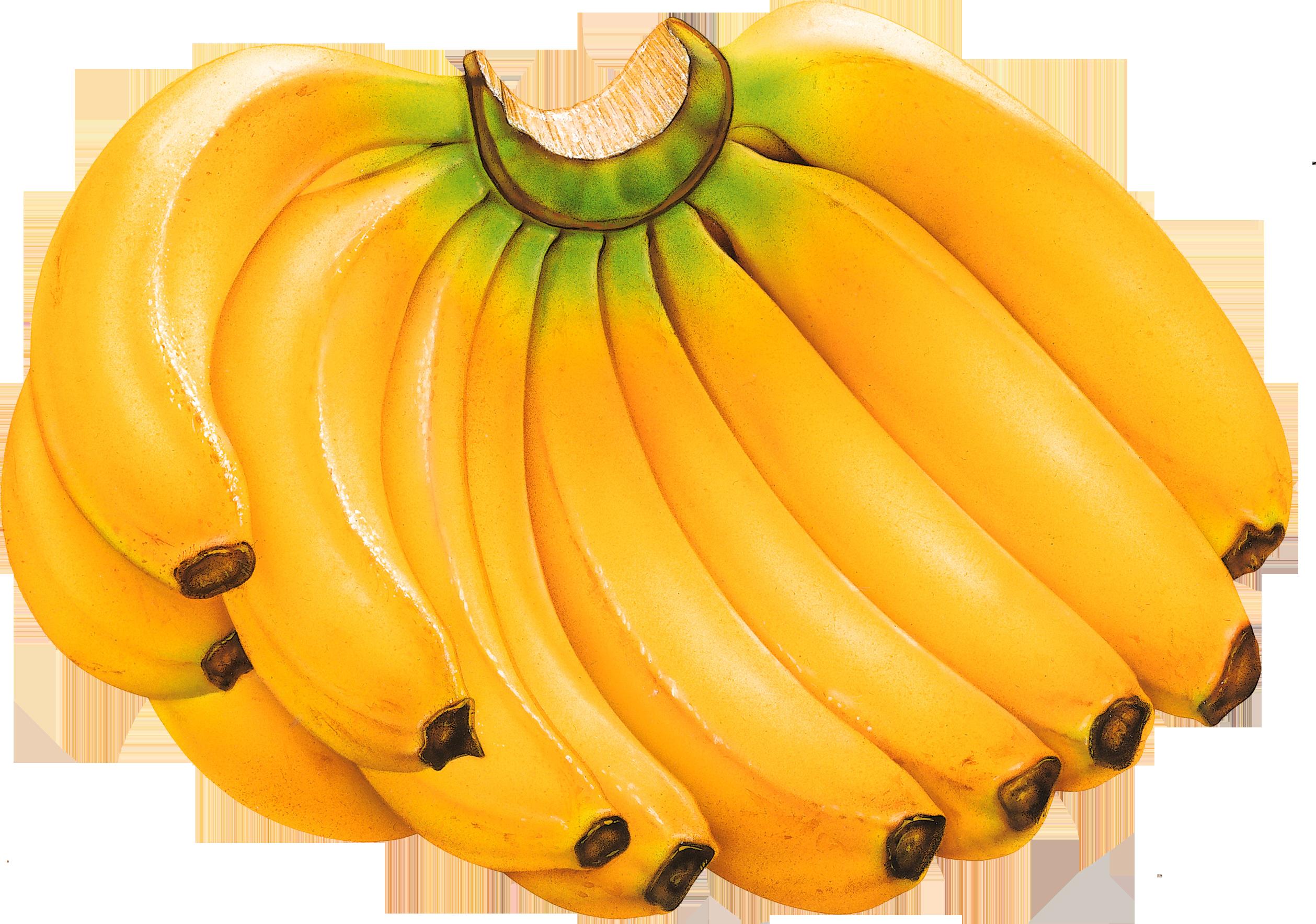 Orange clipart banana. Four isolated stock photo