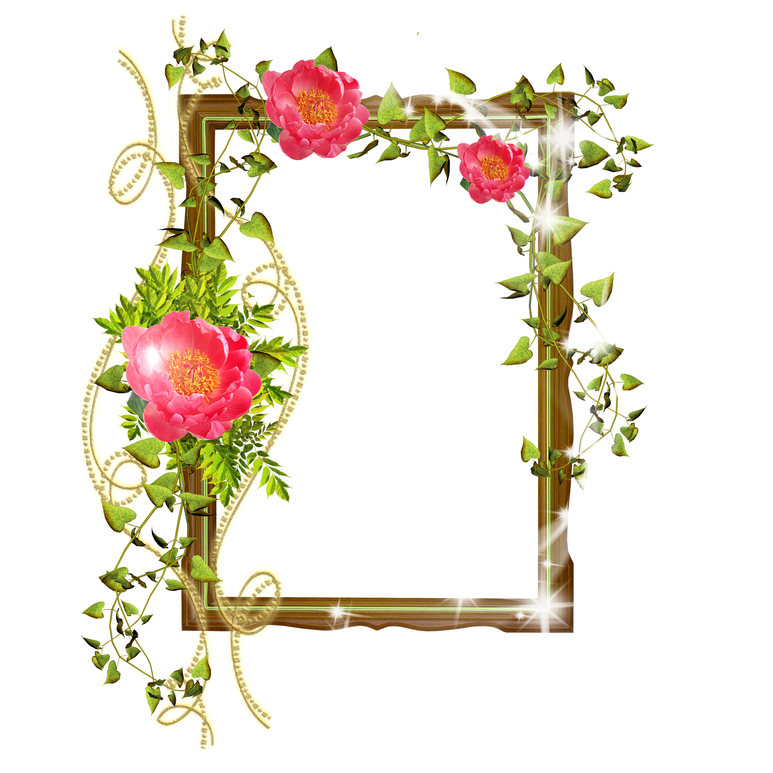 Shining transparent with flowers. Plants clipart frame