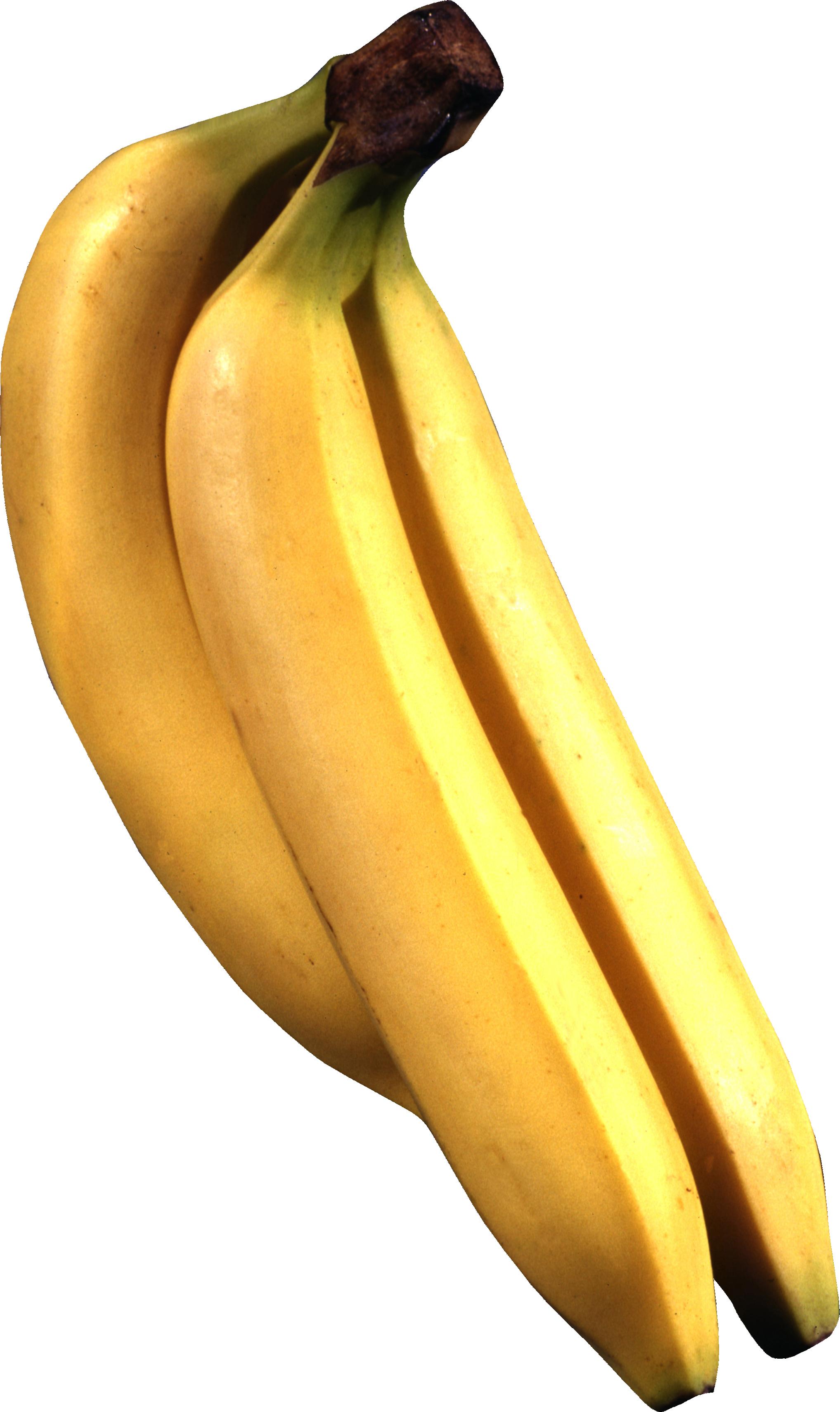Png image purepng free. Orange clipart banana