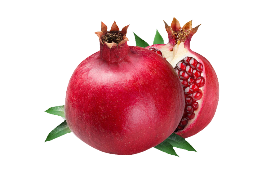 Fruit clip art transprent. Pomegranate clipart shofar