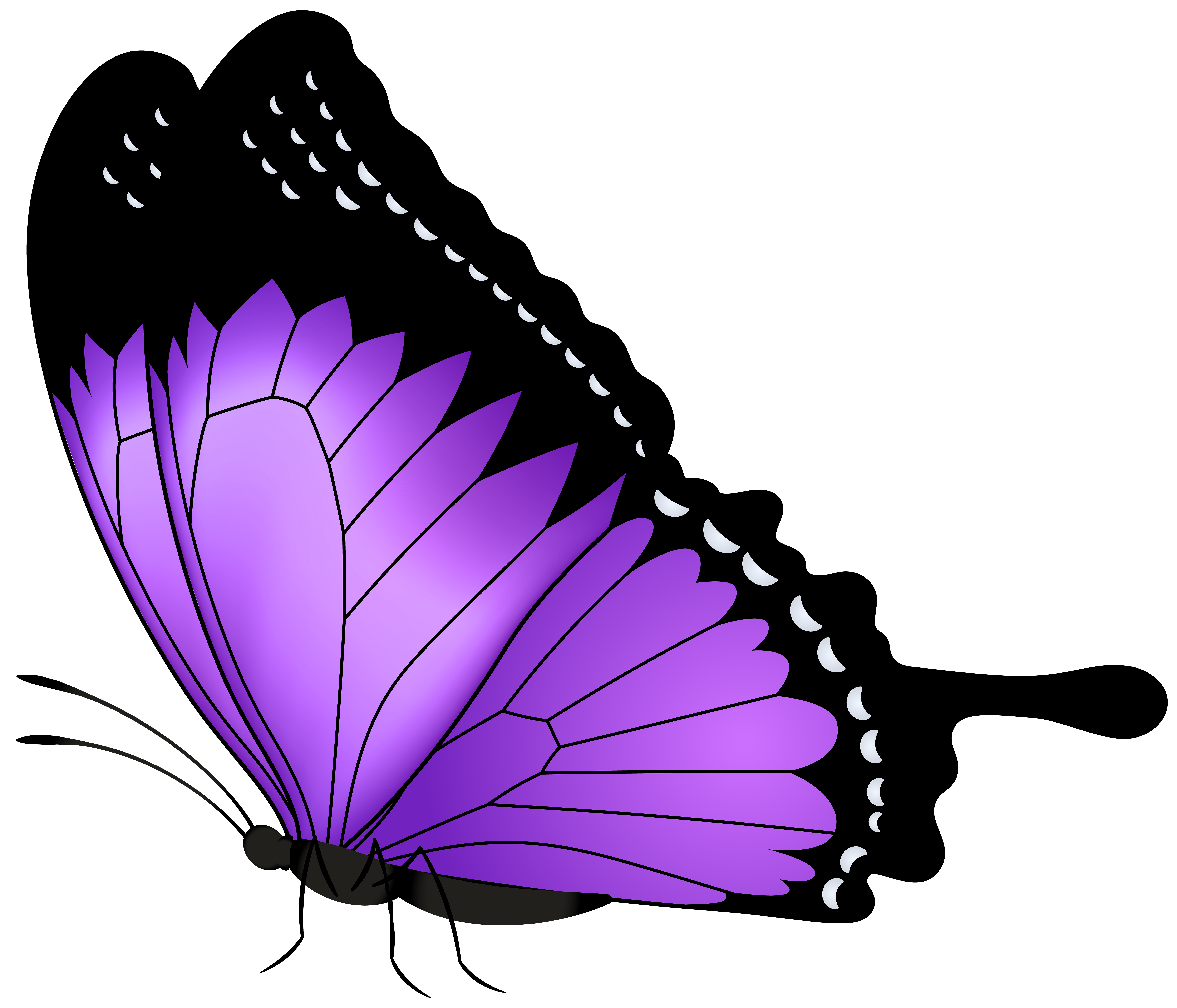 Butterfly transparent png clip. Insects clipart purple