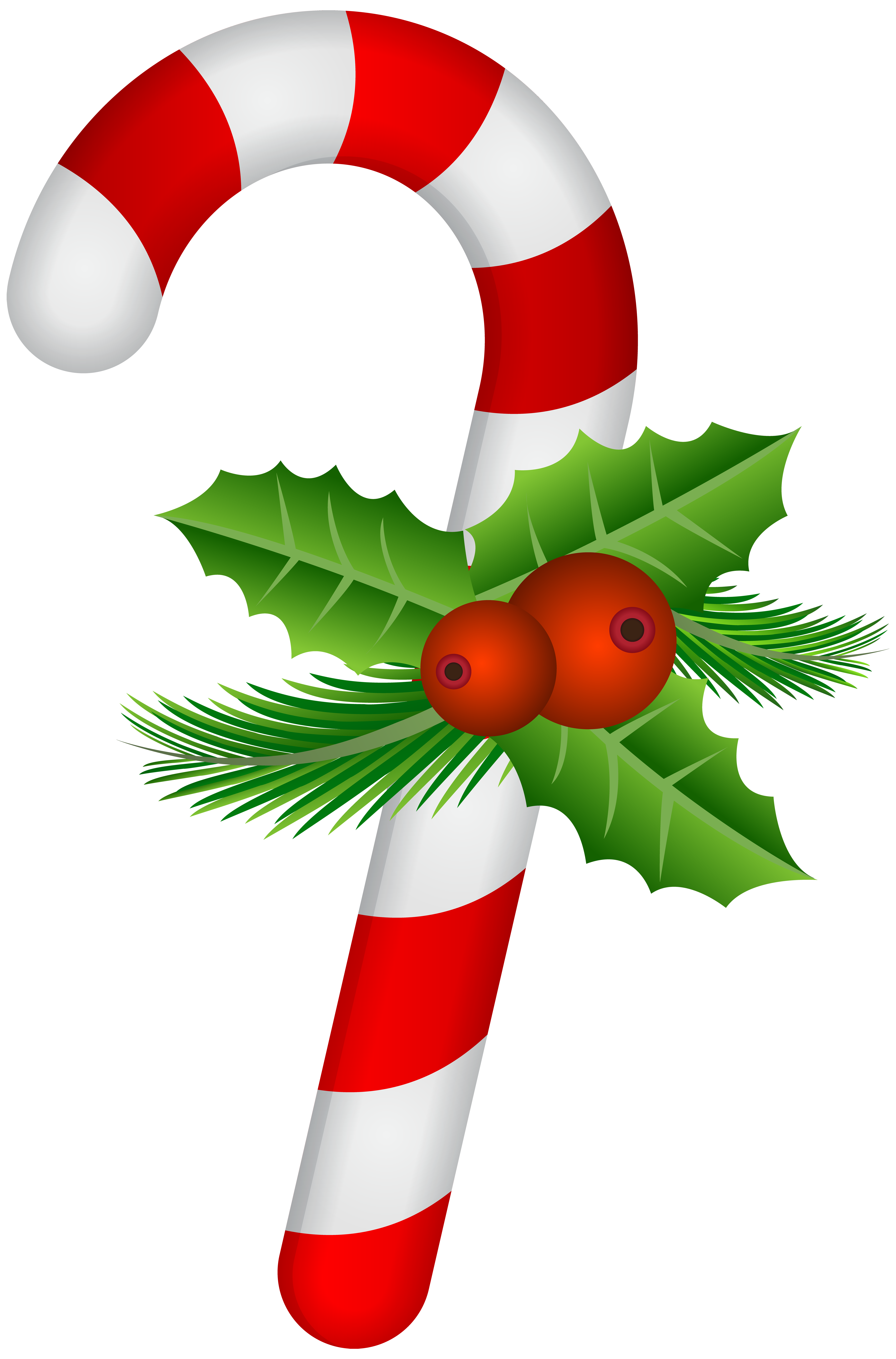 Movies clipart candy. Cane with holly transparent