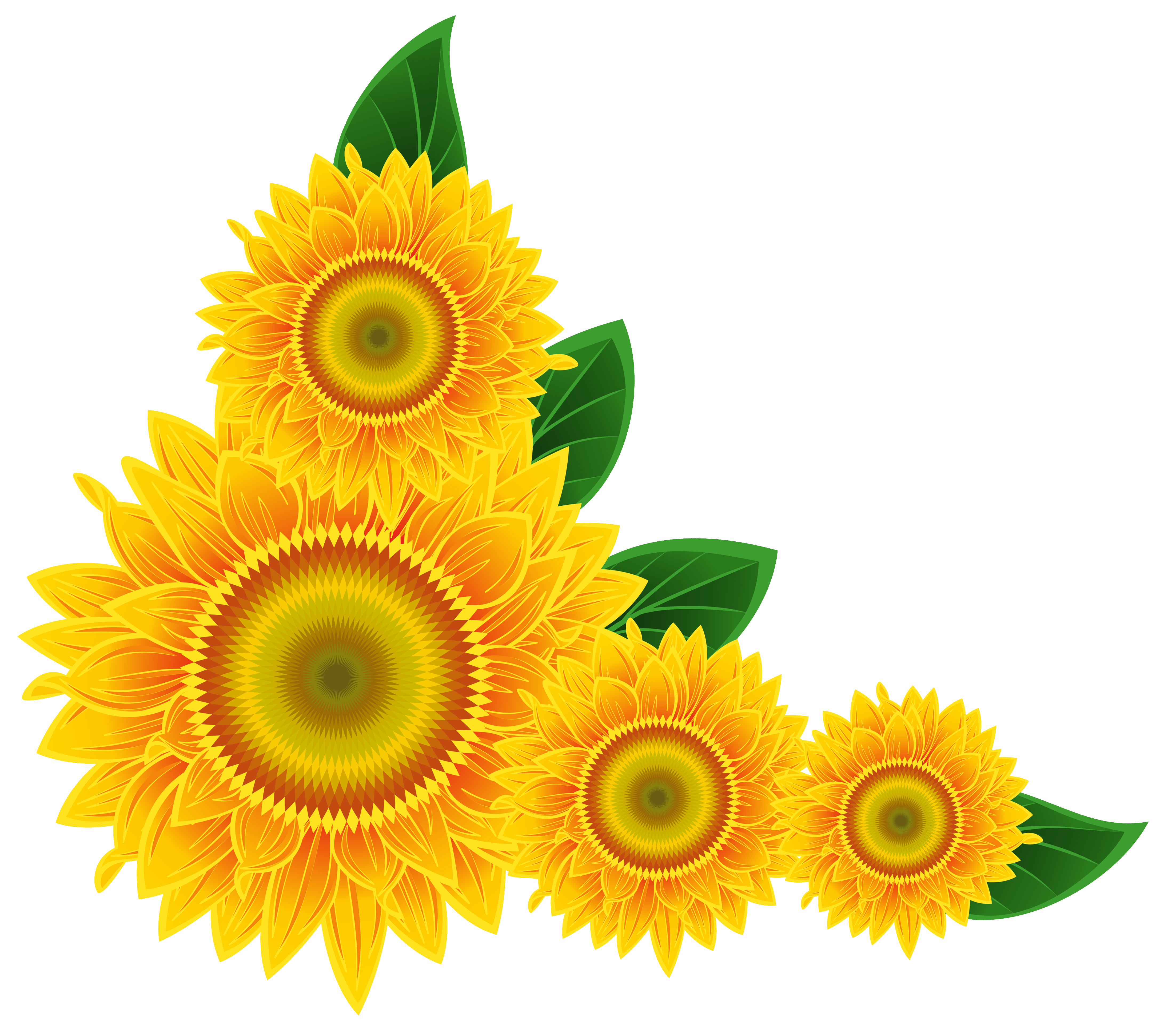 Sunflower decoration png image. Funeral clipart corner