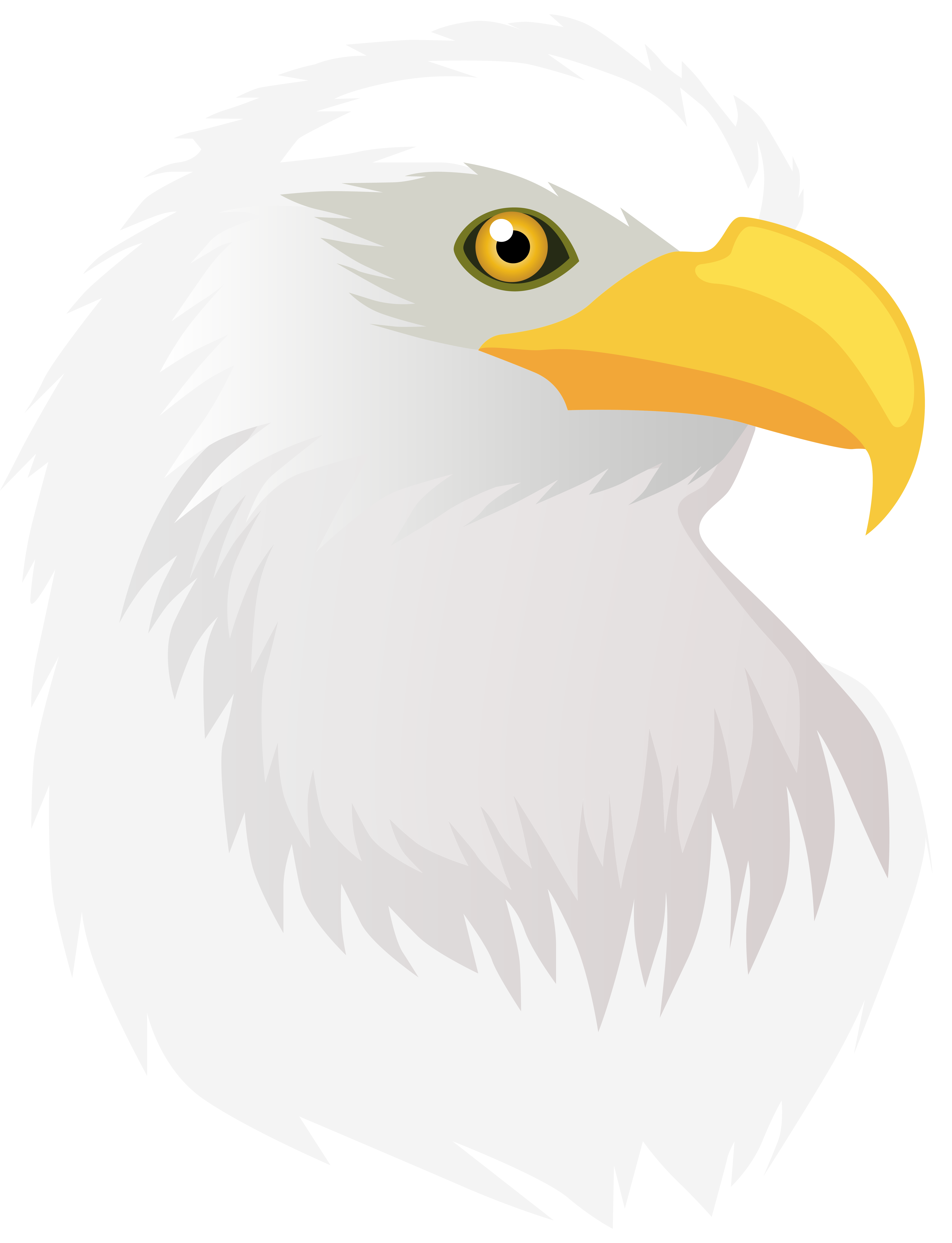 Head transparent png clip. Eagle clipart name