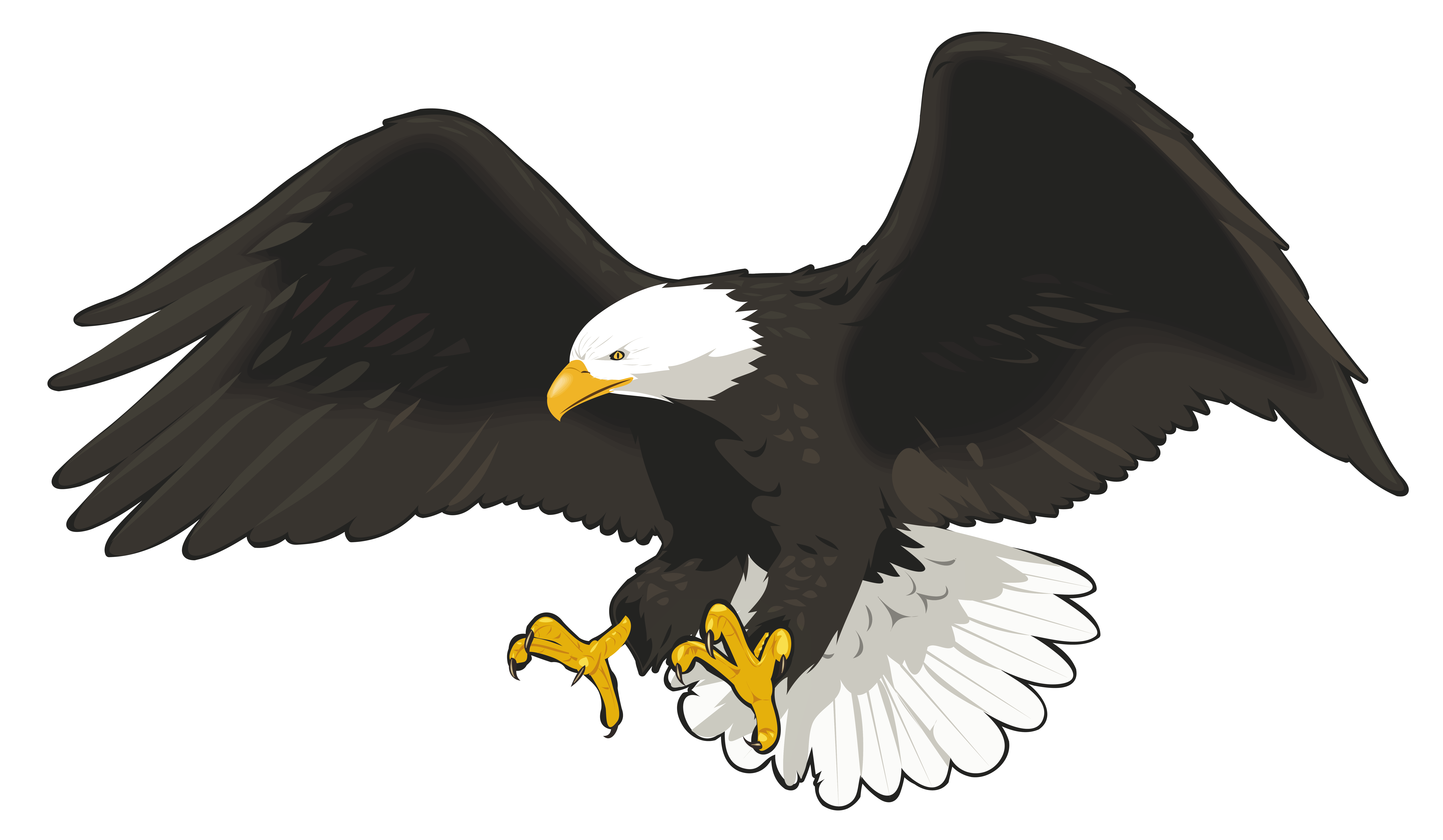 Clip art image gallery. Eagle vector png