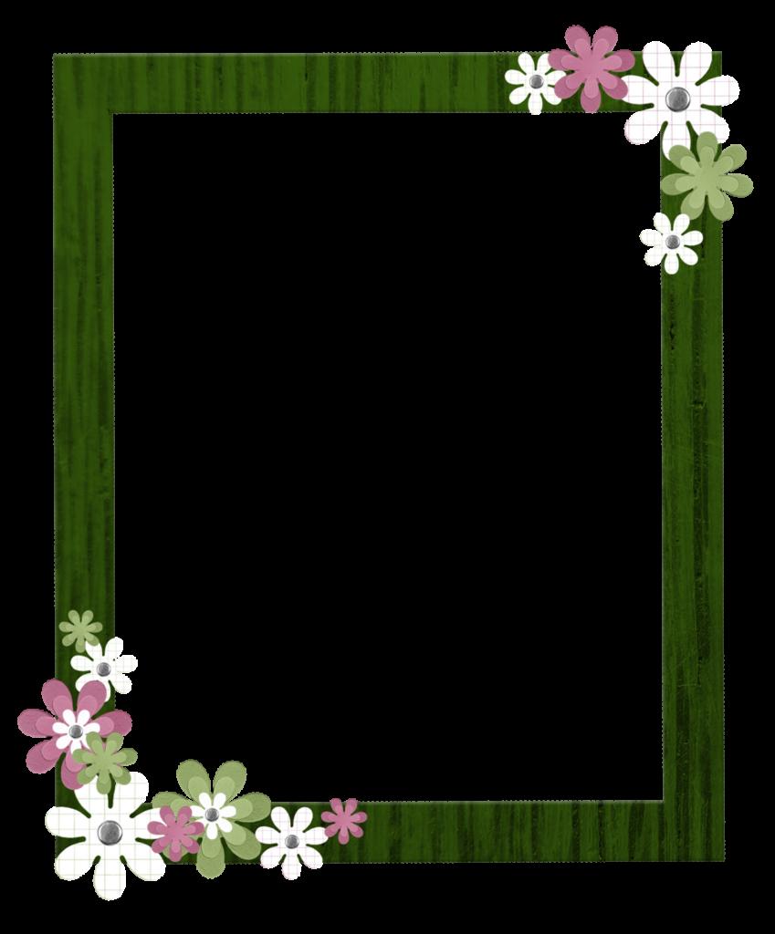 Green border frame png. Vines clipart aesthetic