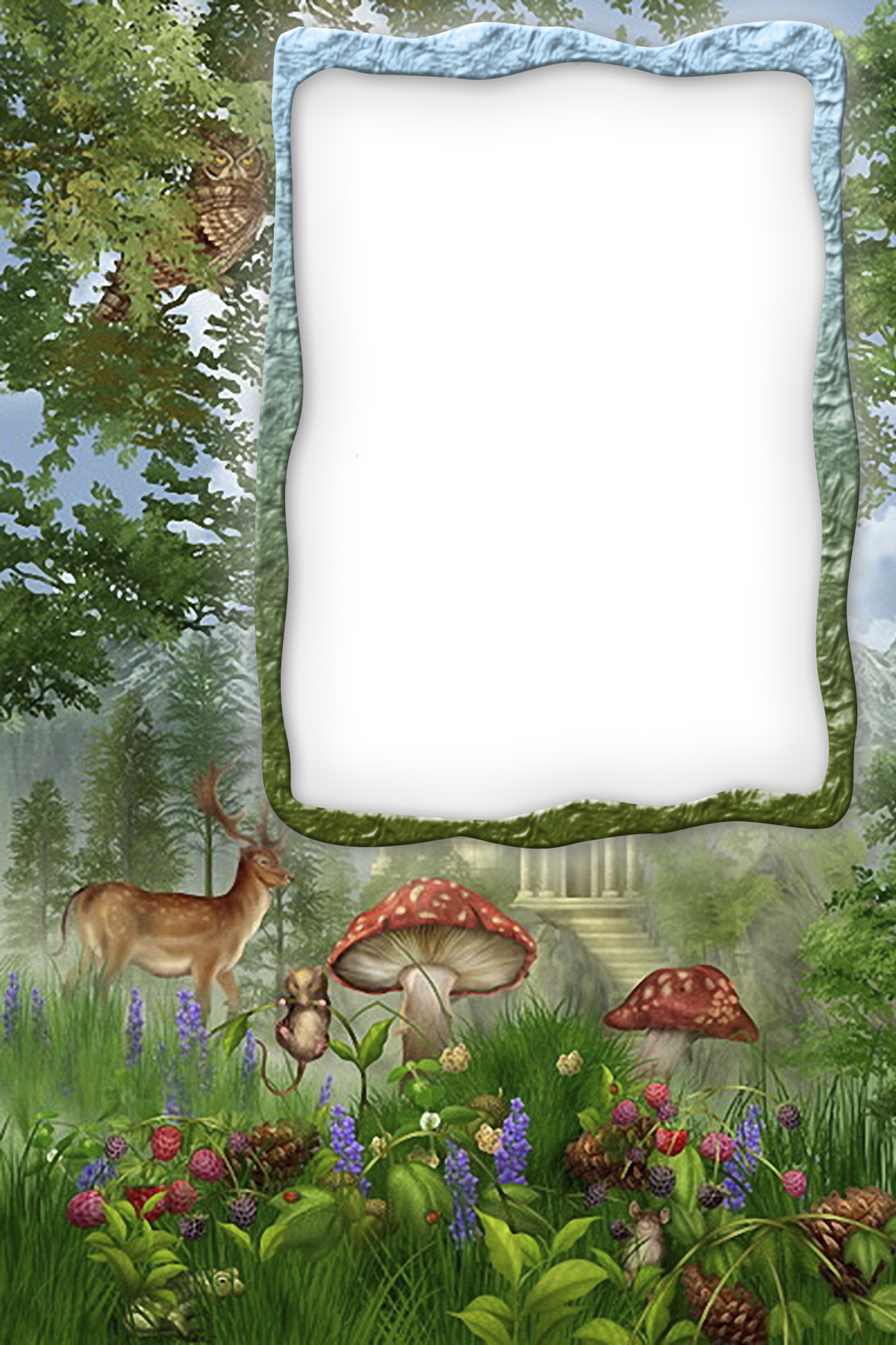 Clipart forest file. Transparent frame gallery yopriceville