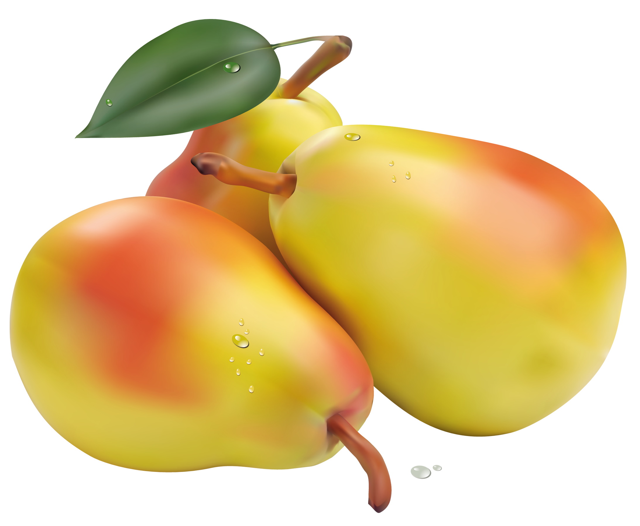 Pear clipart different kind fruit. Pears png picture gallery