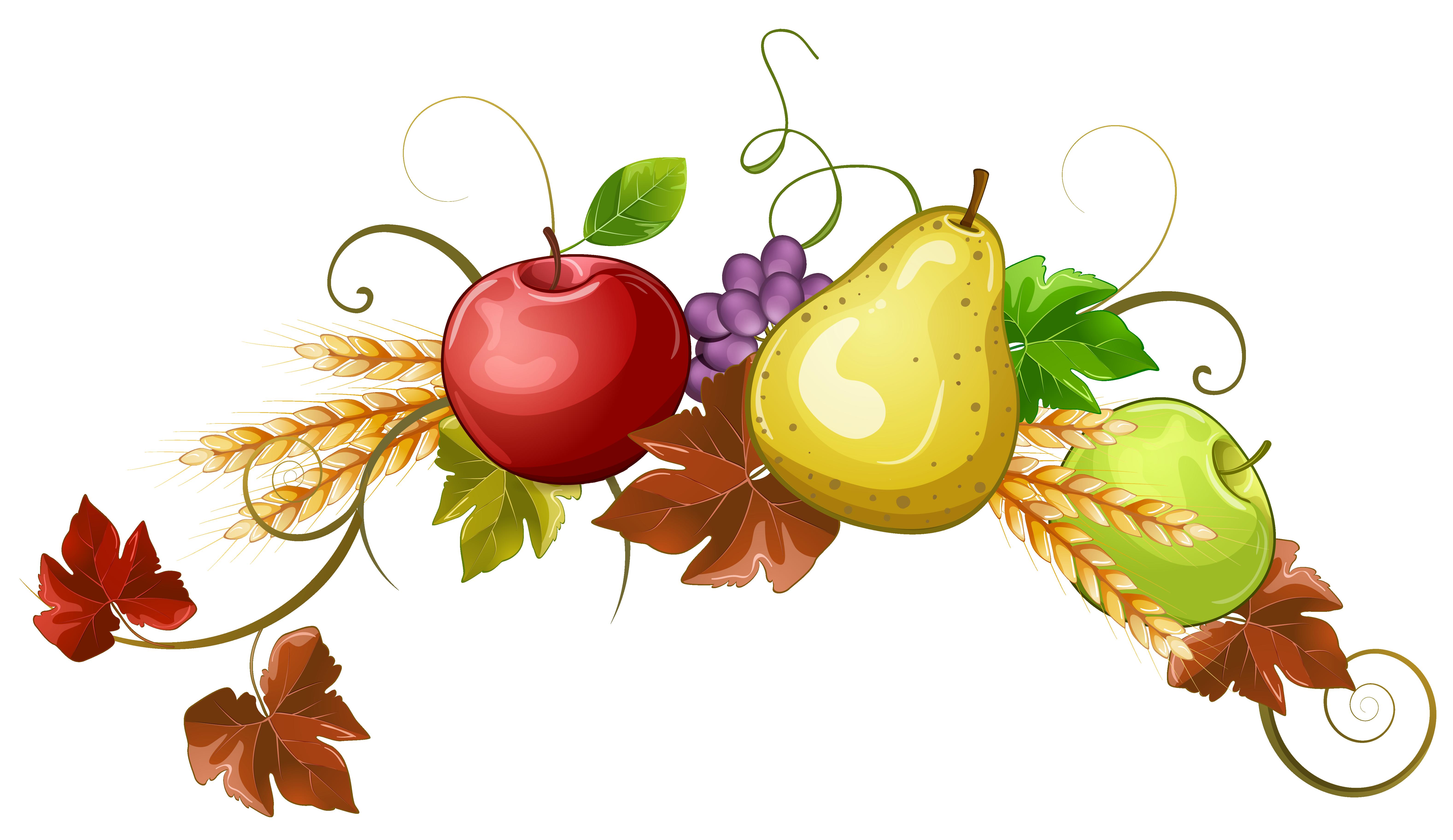 Autumn fruits decoration png. Clipart fruit stick