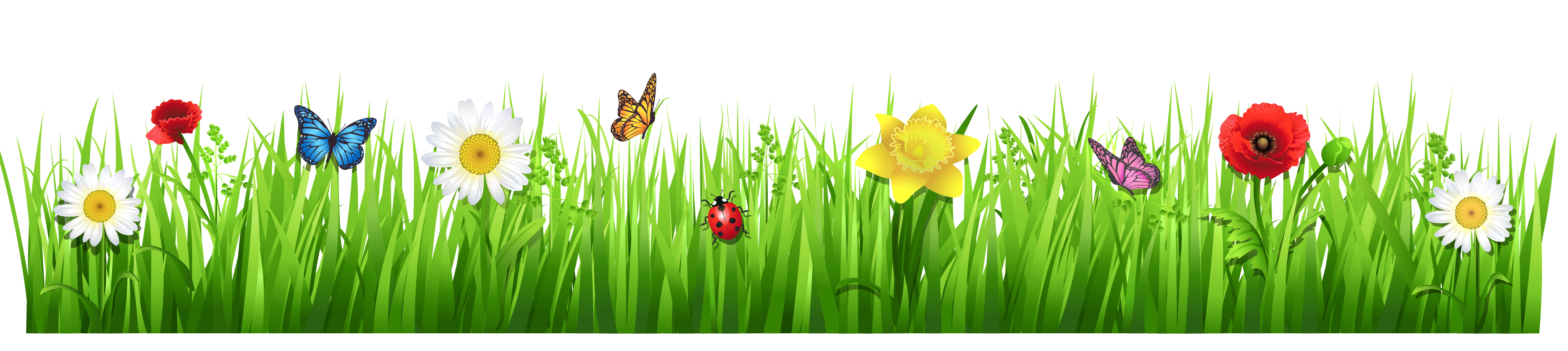 Clipart grass translucent. Spring with flowers png