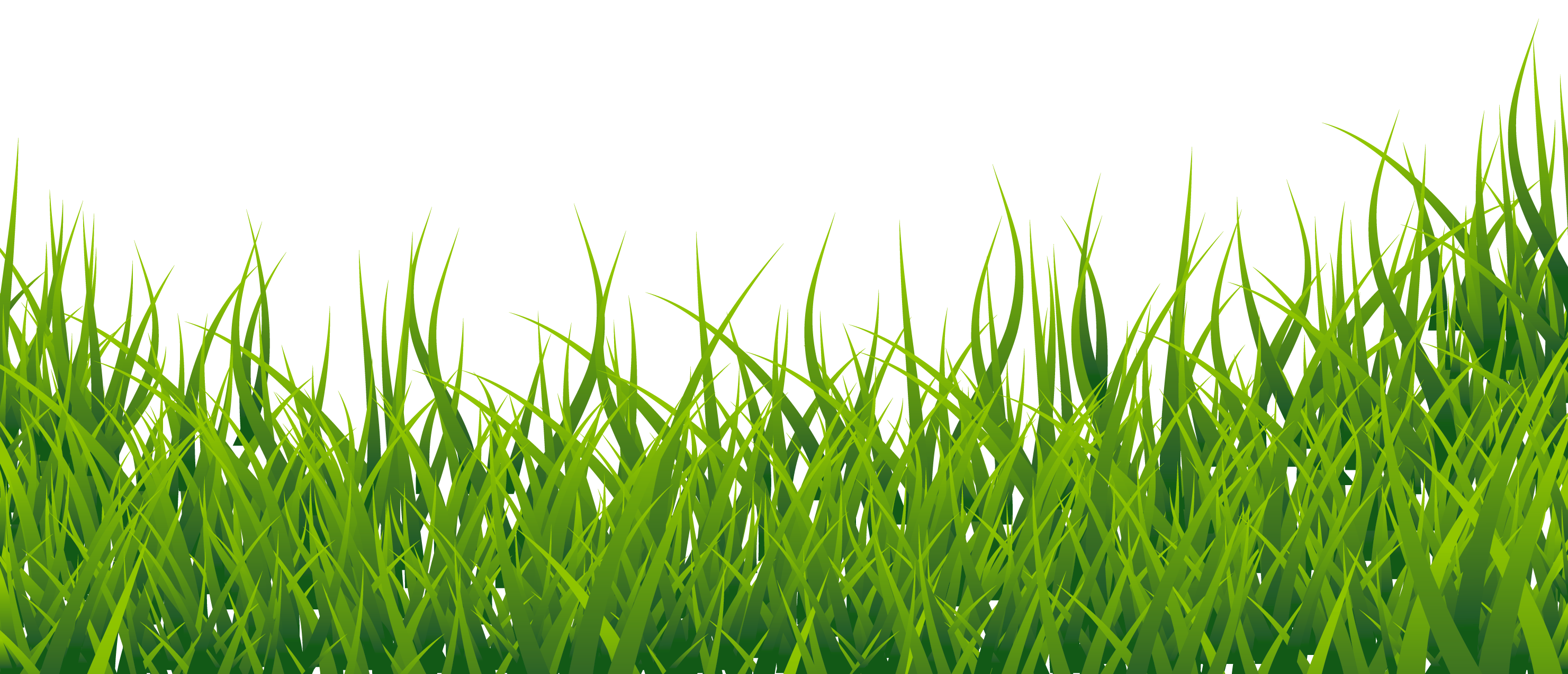Grass border png. Clipart picture gallery yopriceville