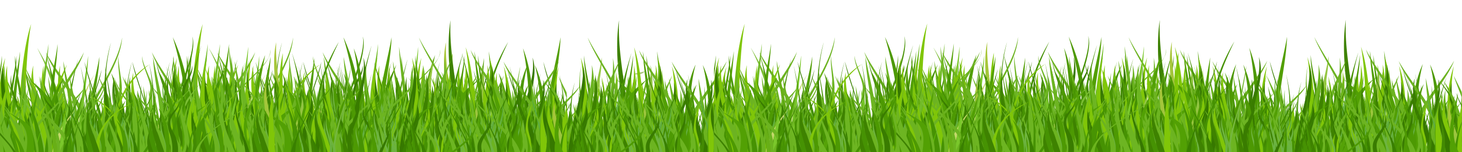 Grass border png. Clipart no background google