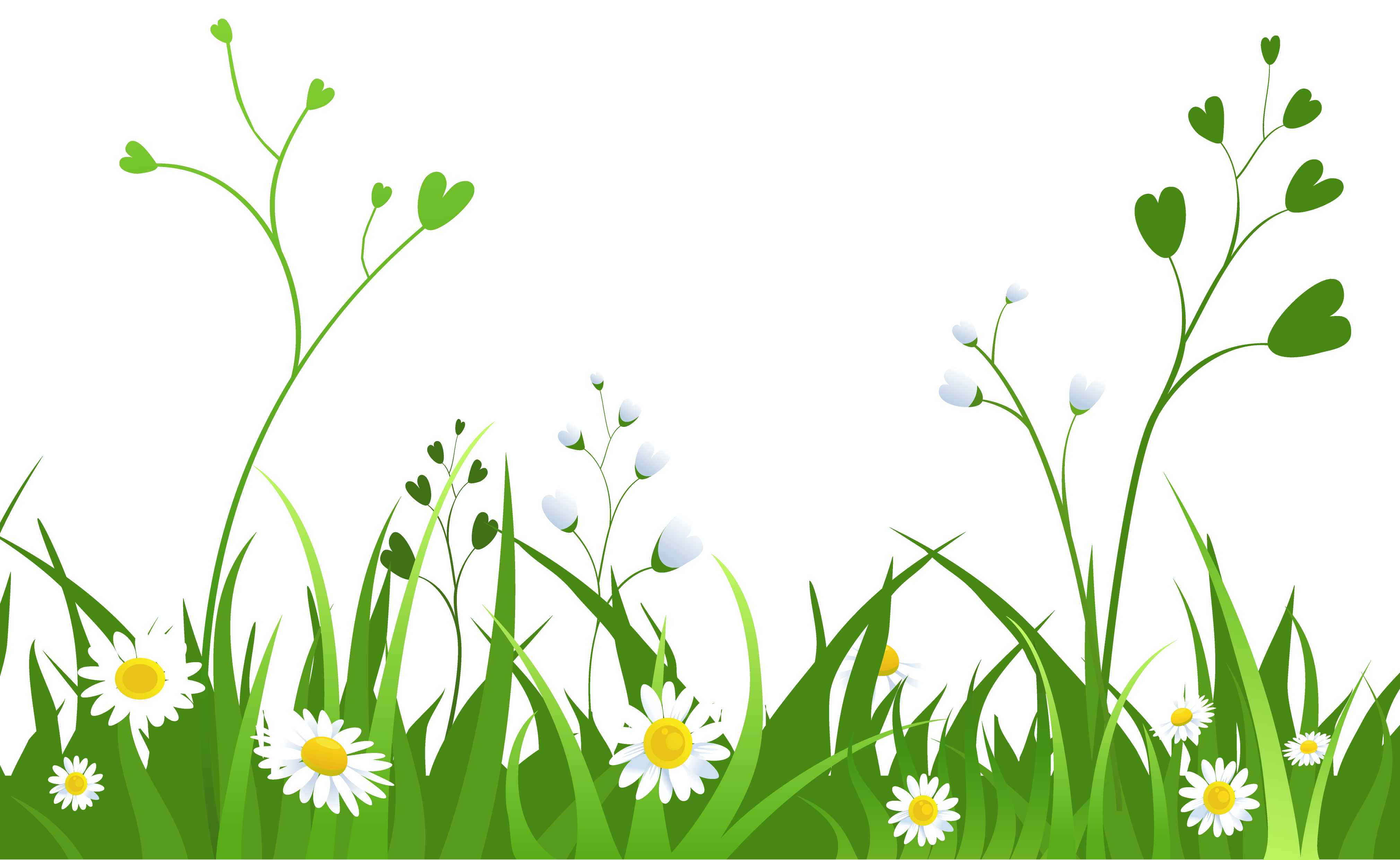 Daisies with grass png. Fight clipart vector