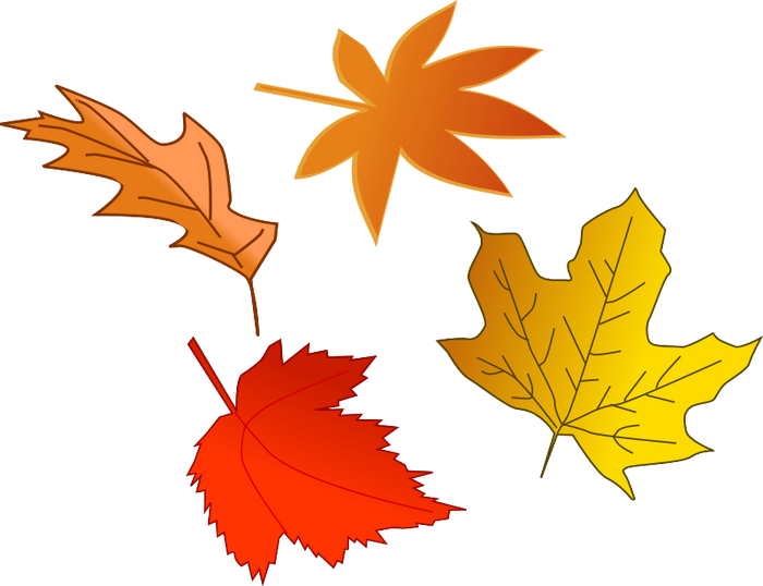 collection of free. Clipart fireworks november