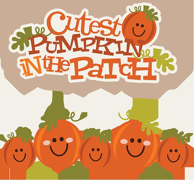 collection of pumpkin. E clipart cute