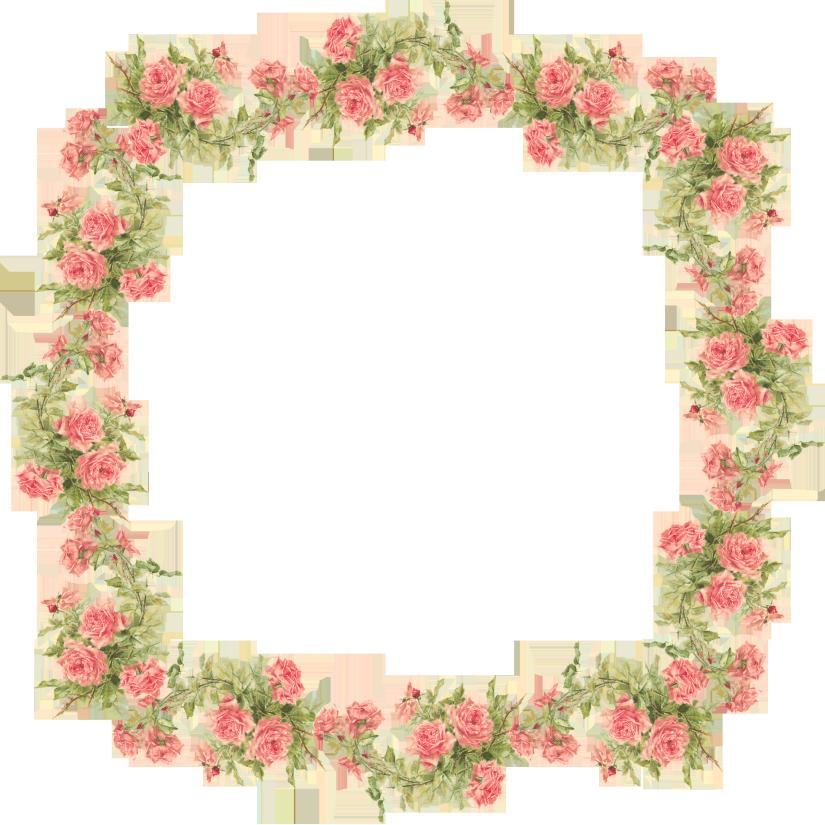 Catherine klein roses digital. Frames clipart peach