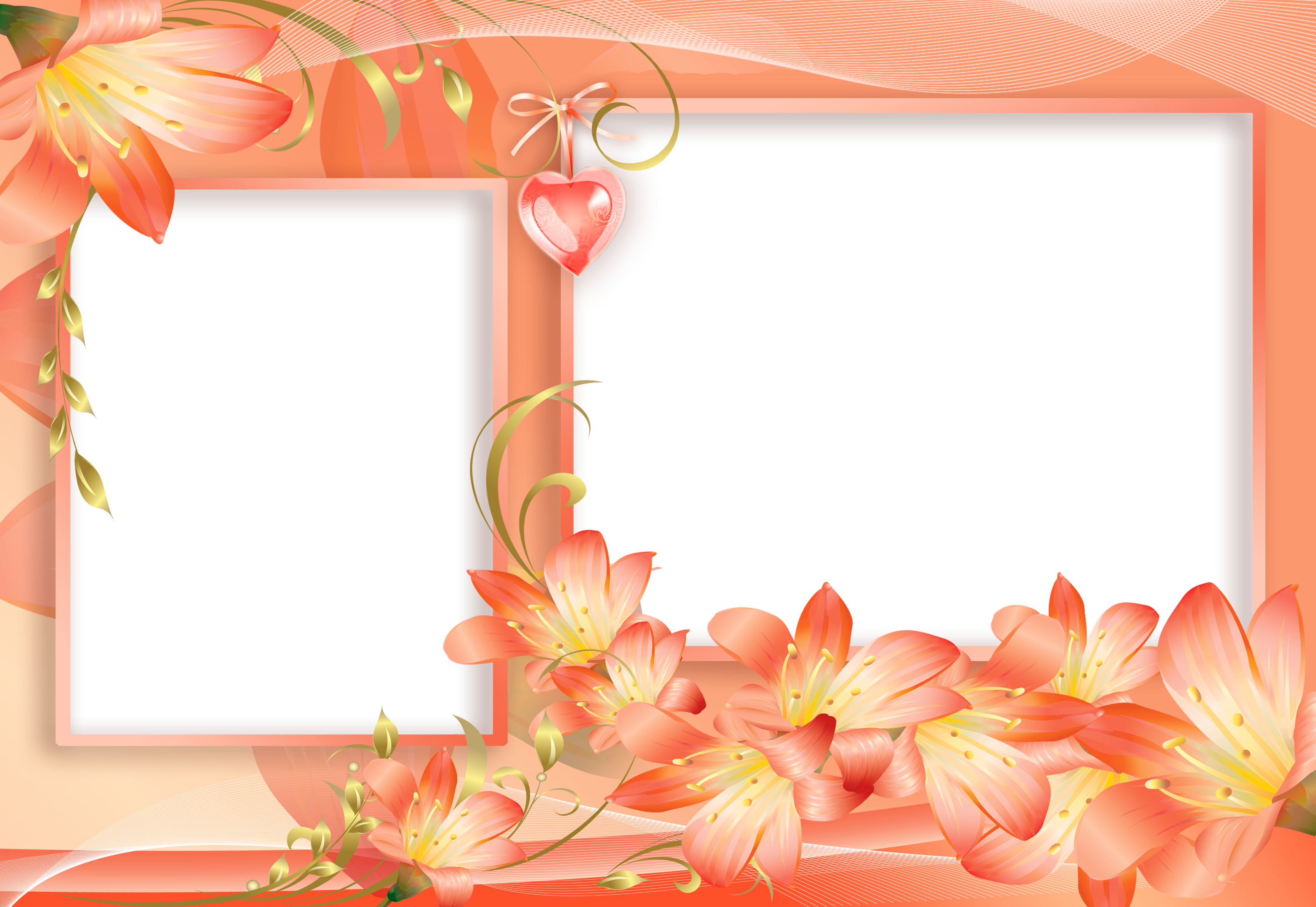And yellow png flowers. Design clipart orange