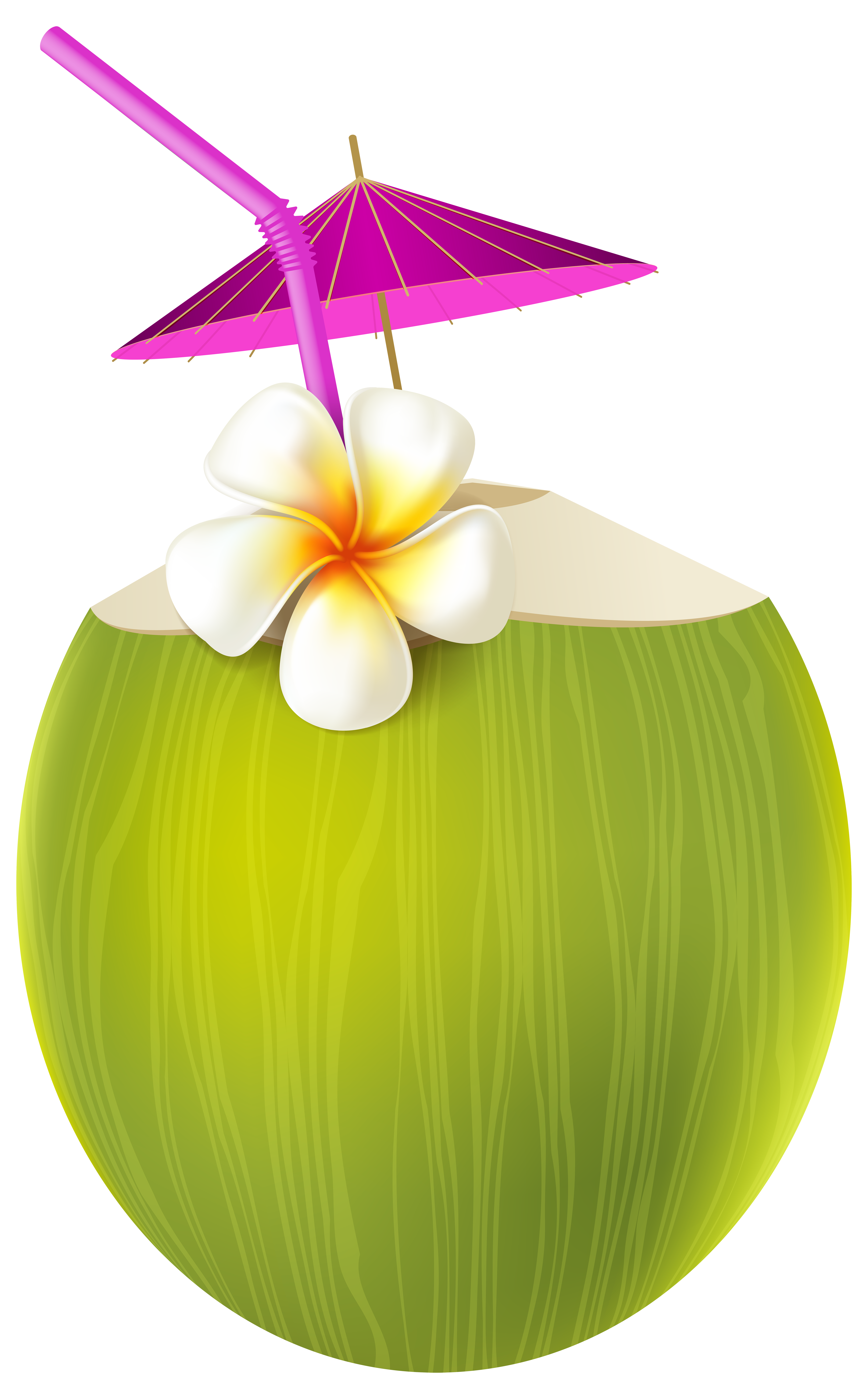 Exotic drink png transparent. Pineapple clipart flower