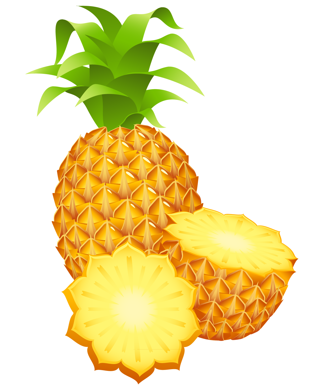 Pineapple clipart flower. Large painted png gallery