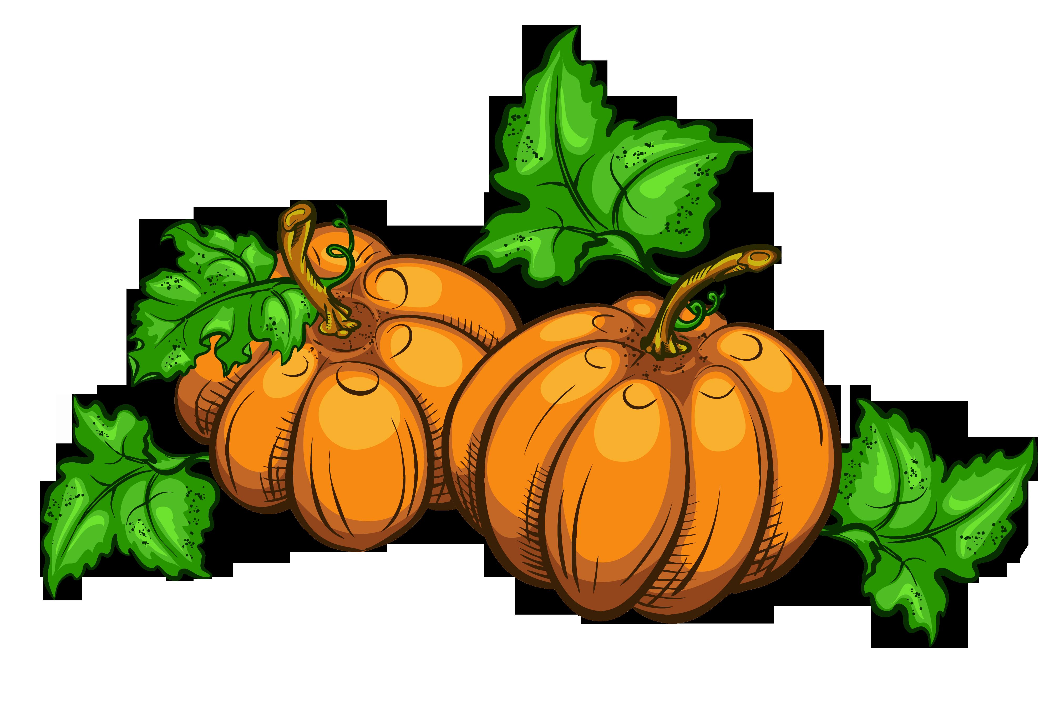 Transparent pumpkins png picture. Pumpkin clipart golf
