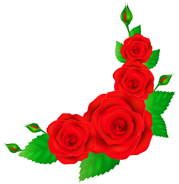 Garland clipart red rose. Roses corner png clip