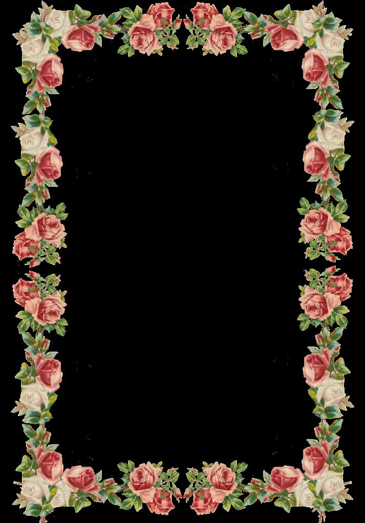 Free digital vintage rose. Letters clipart border