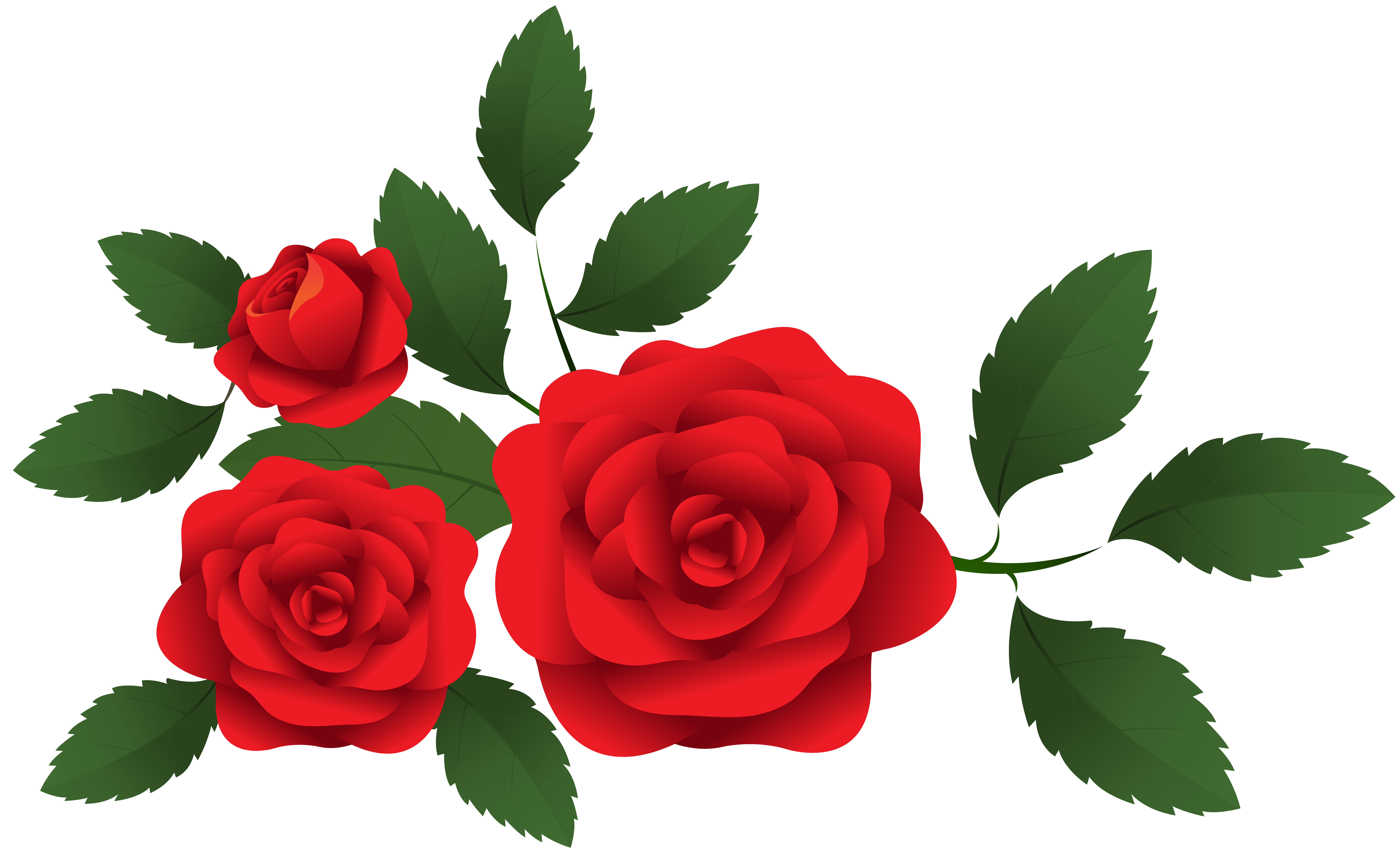 Red roses decoration png. Rose clipart stick