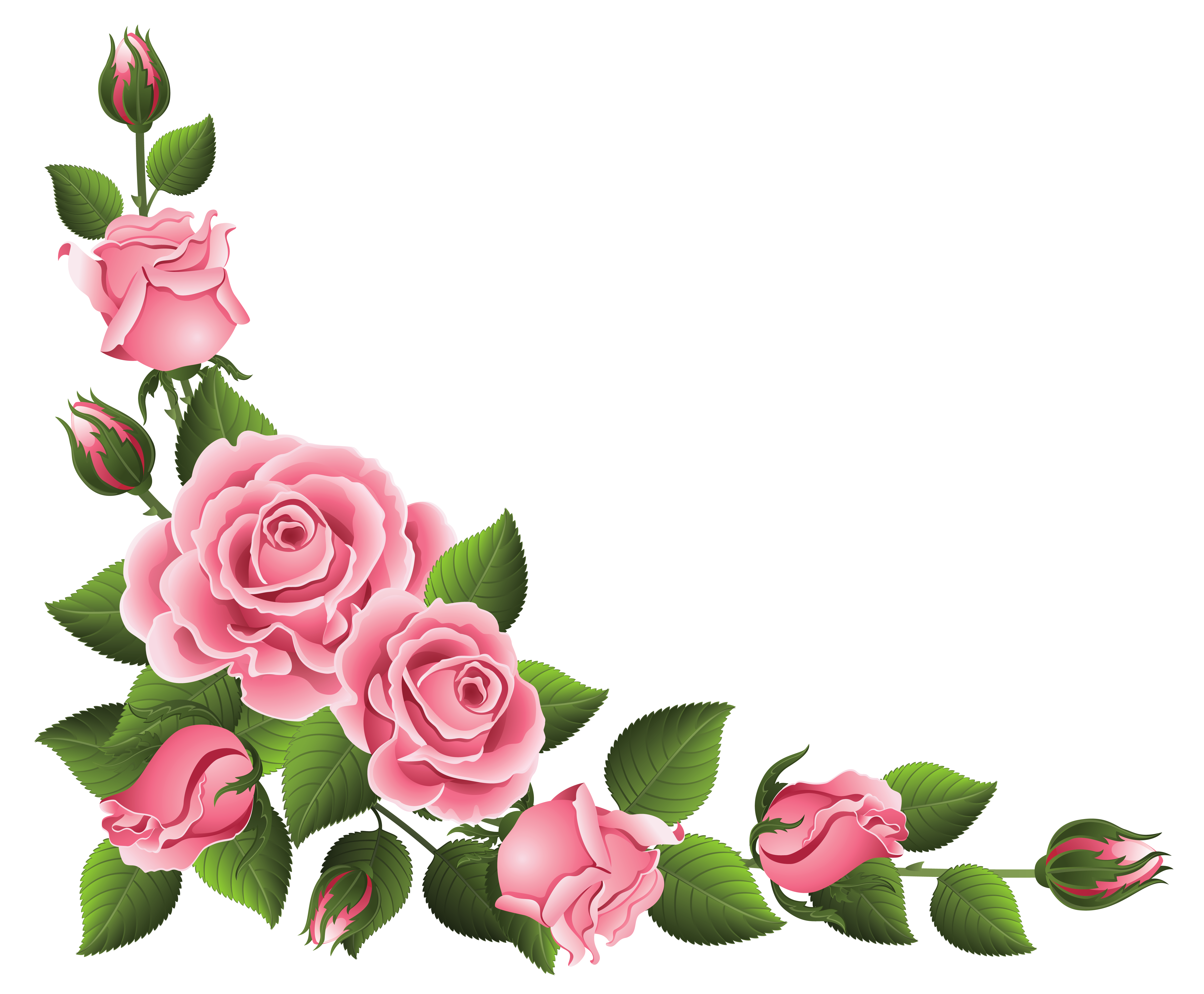 Corner decoration with clipart. Roses png images
