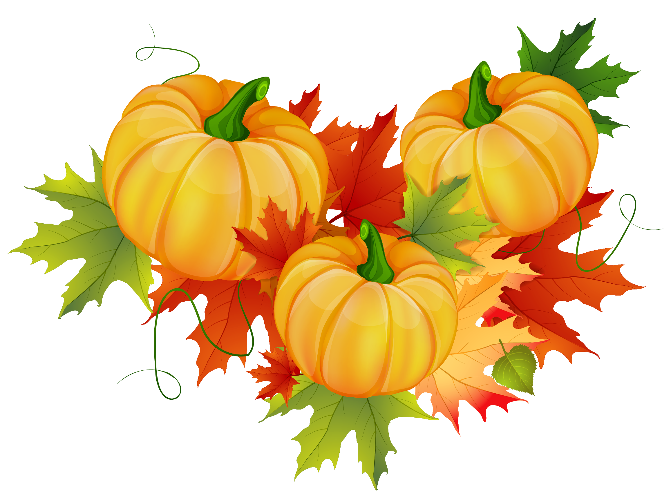 Thanksgiving png images. Pumpkin clipart