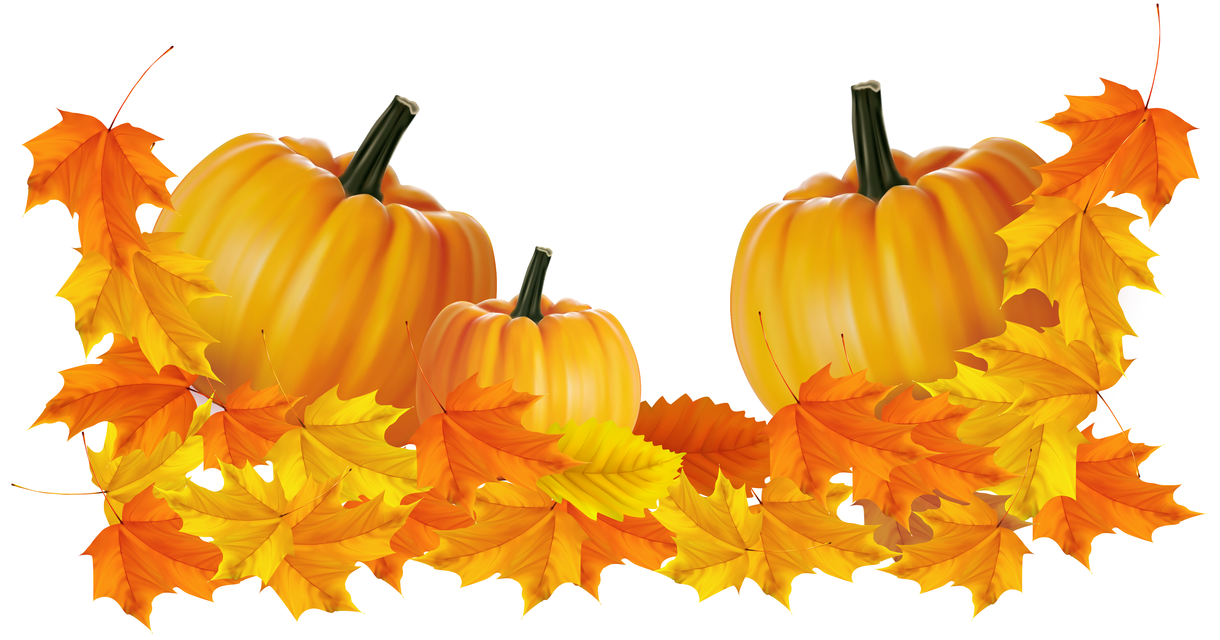 Transparent pumpkin decor clipart. Thanksgiving border png