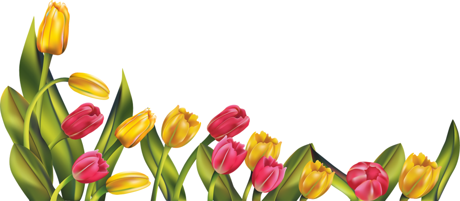 Free spring craft show. Divider clipart tulip