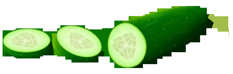 Transparent sliced cucamber png. Vegetables clipart winter