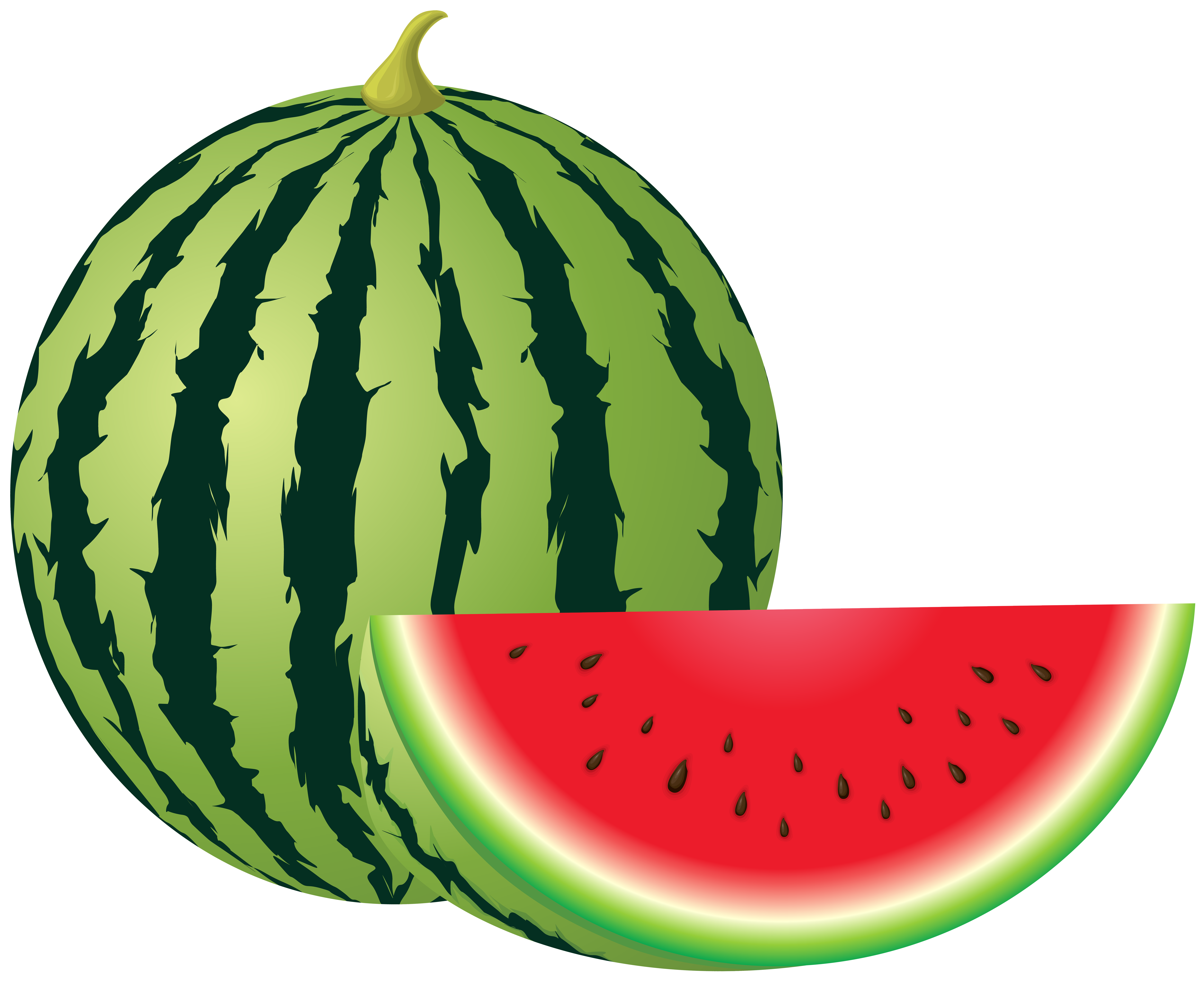 Watermelon clipart cucumber melon. Png clip art image