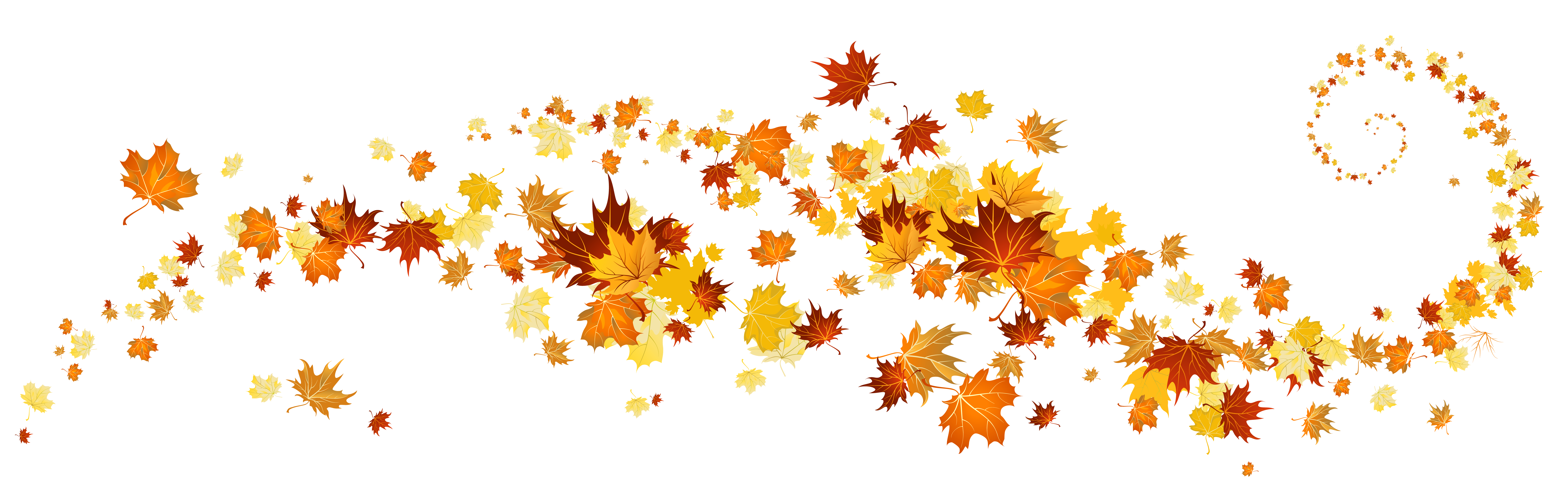 Autumn leaves decoration png. Clipart trees thanksgiving