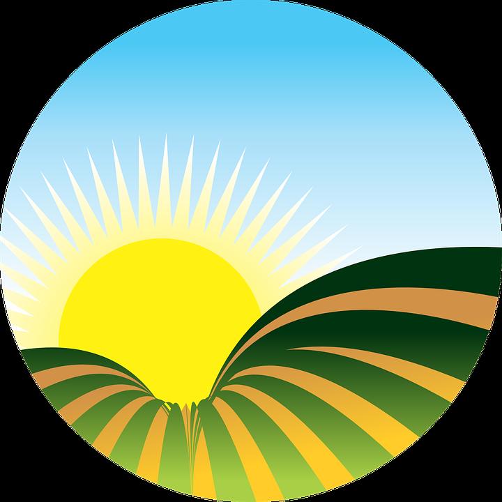 Farmers clipart rice plantation. Farm sunrise free on