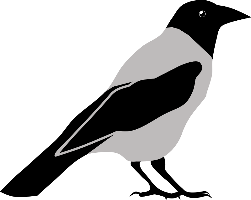 Birds and clip art. Skeleton clipart crow
