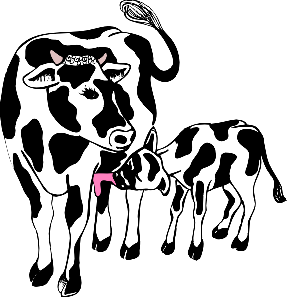 Doctor clipart cow. And calf clip art