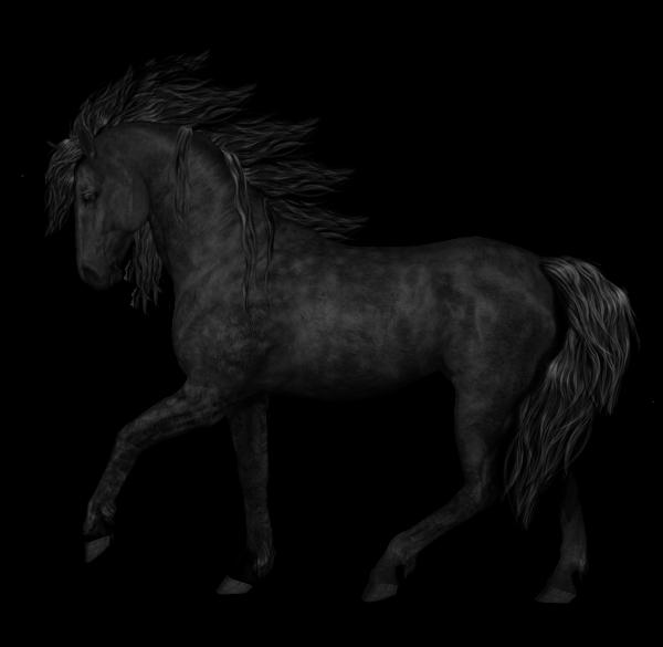 clipart horse arabian horse