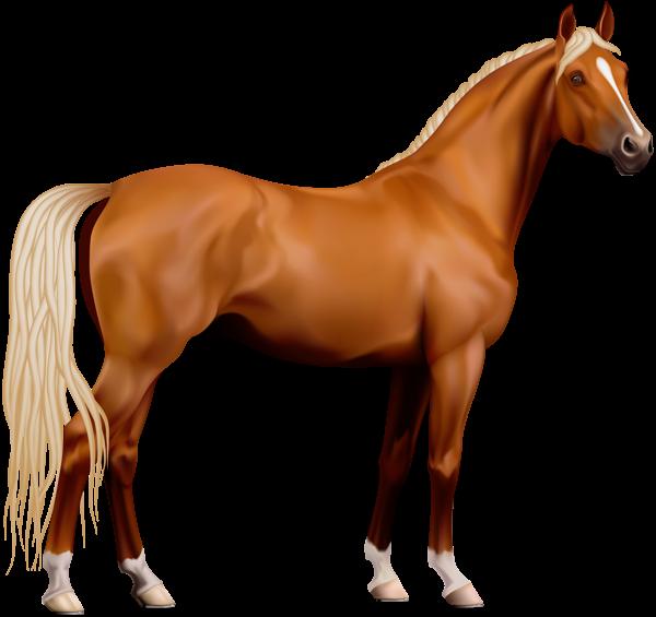 Clipart fire horse. Transparent png variedad pinterest