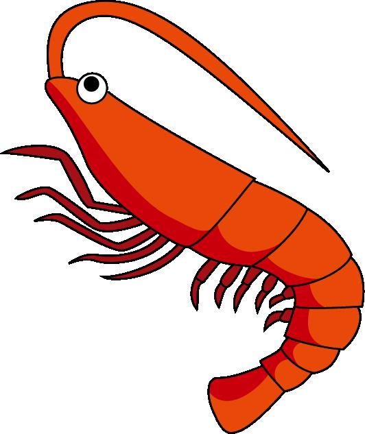 Fish clipart shrimp. Free download best on