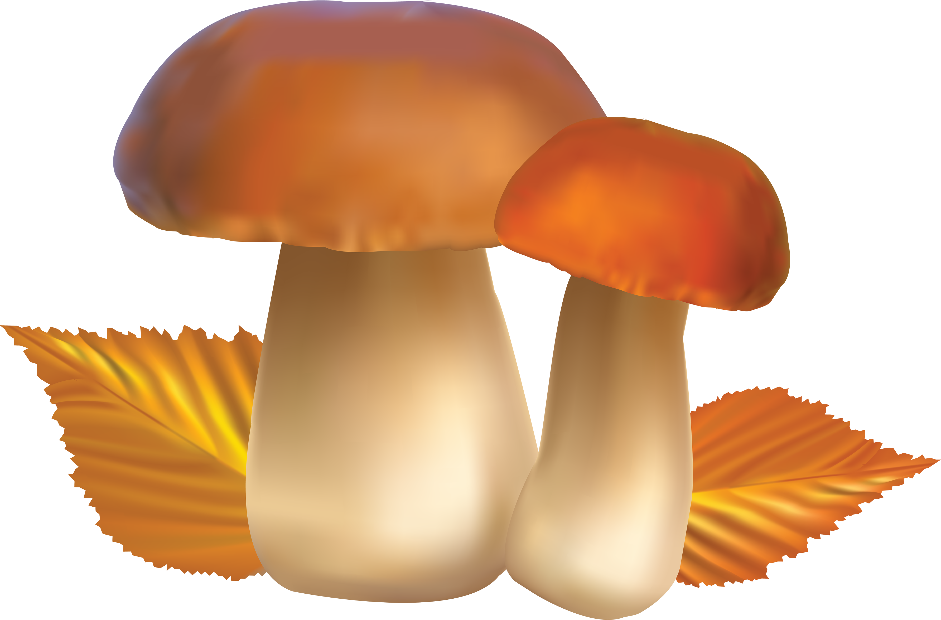 Images free pictures clip. Ladybug clipart mushroom